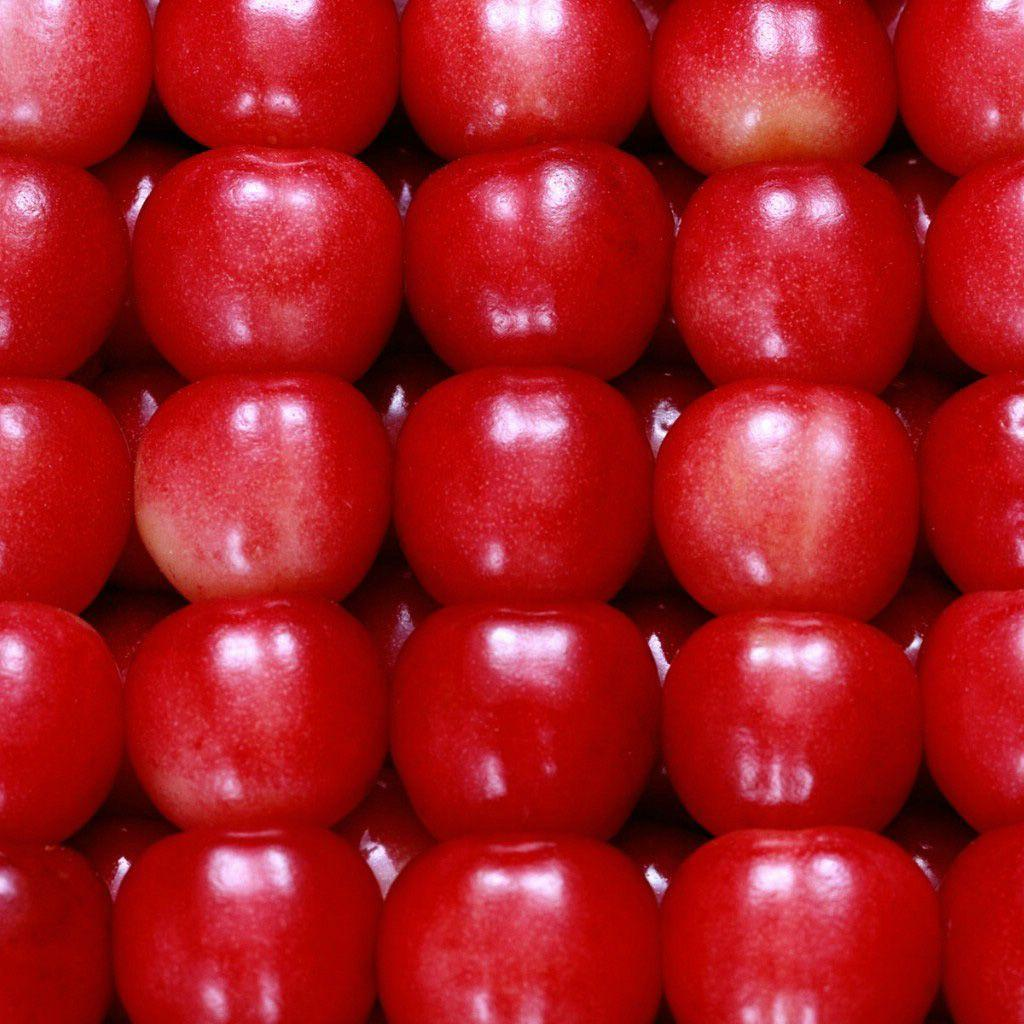 Red Apple Fruit Wallpapers - Wallpaper Cave
