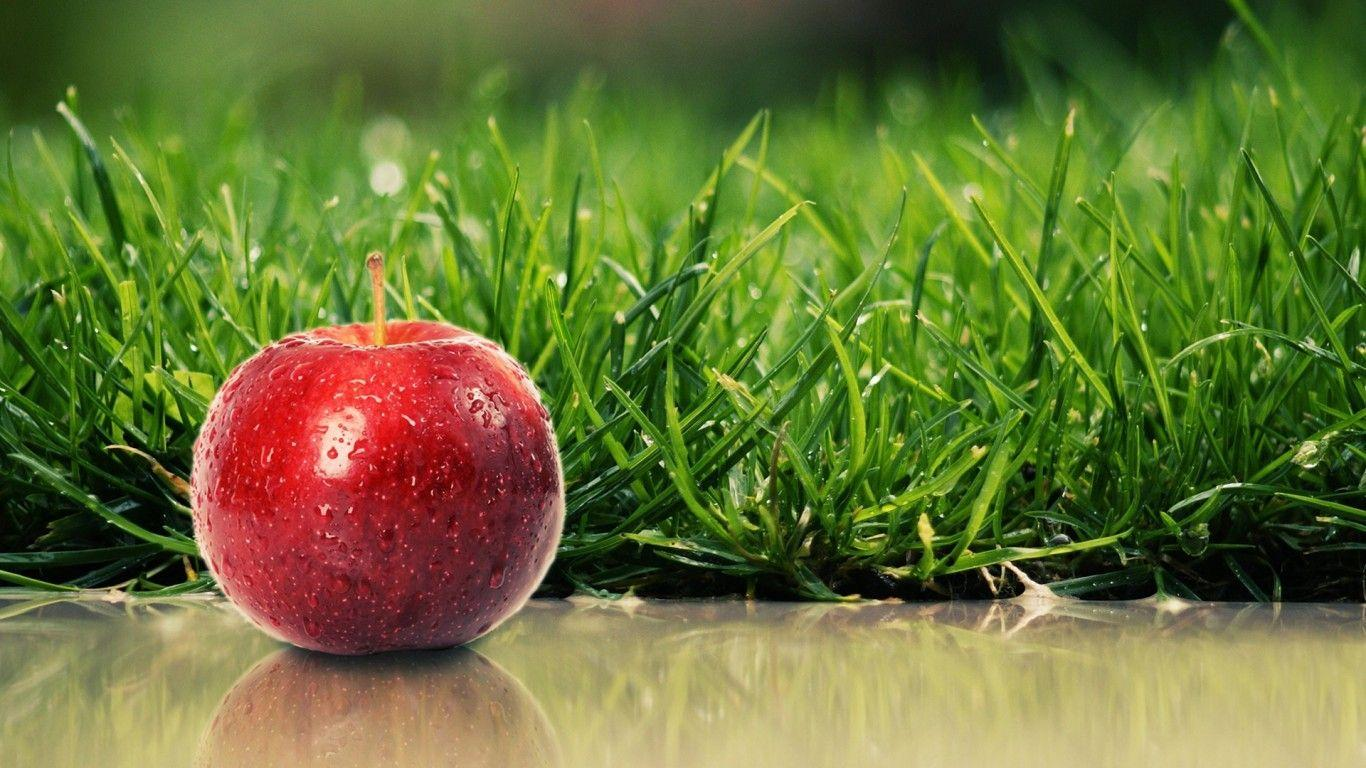 Apple Fruit Background Picture