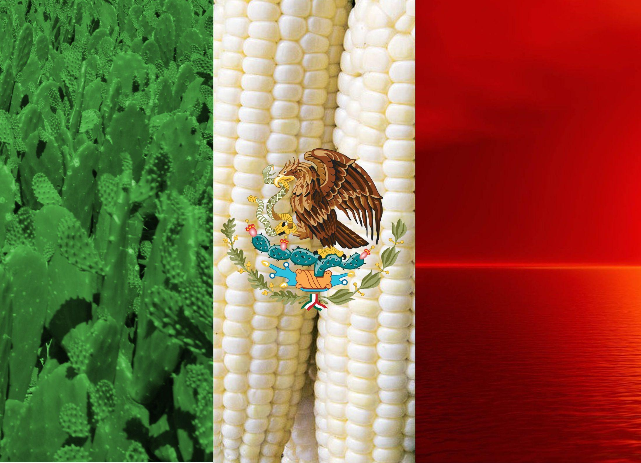 A proper Mexican flag wallpapers : wallpapers