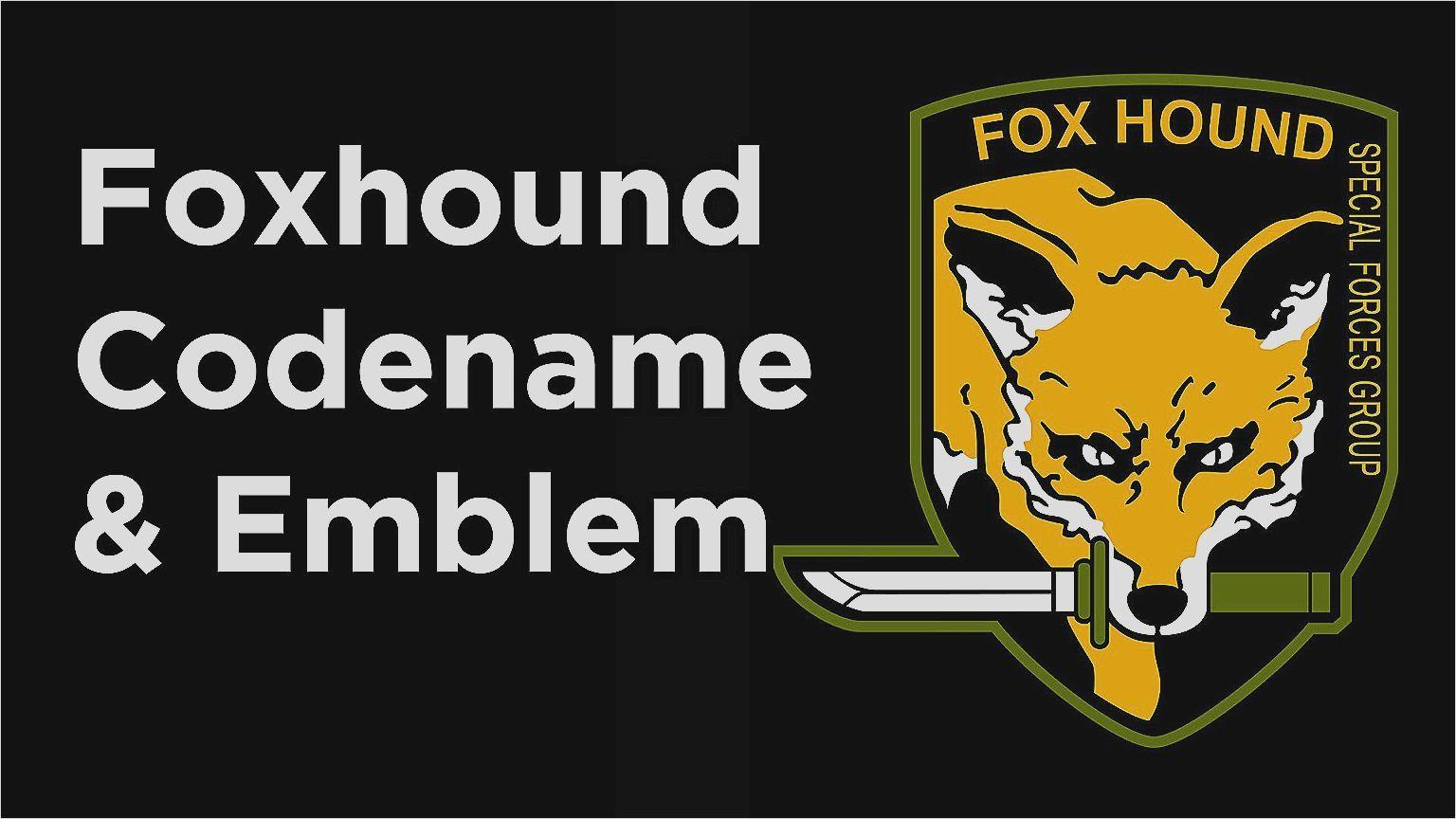 Fresh Foxhound Wallpapers