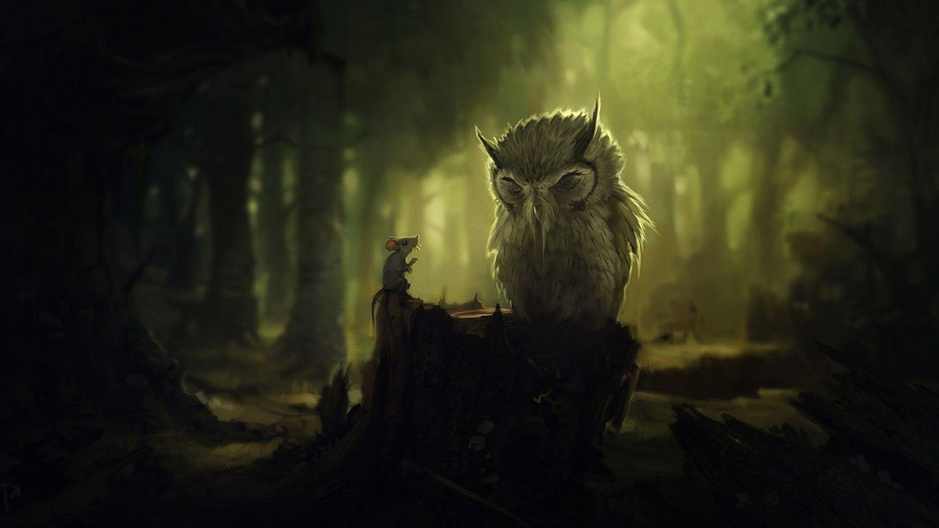 Animals Birds Owl Forest Wallpapers Desktop Phone Tablet