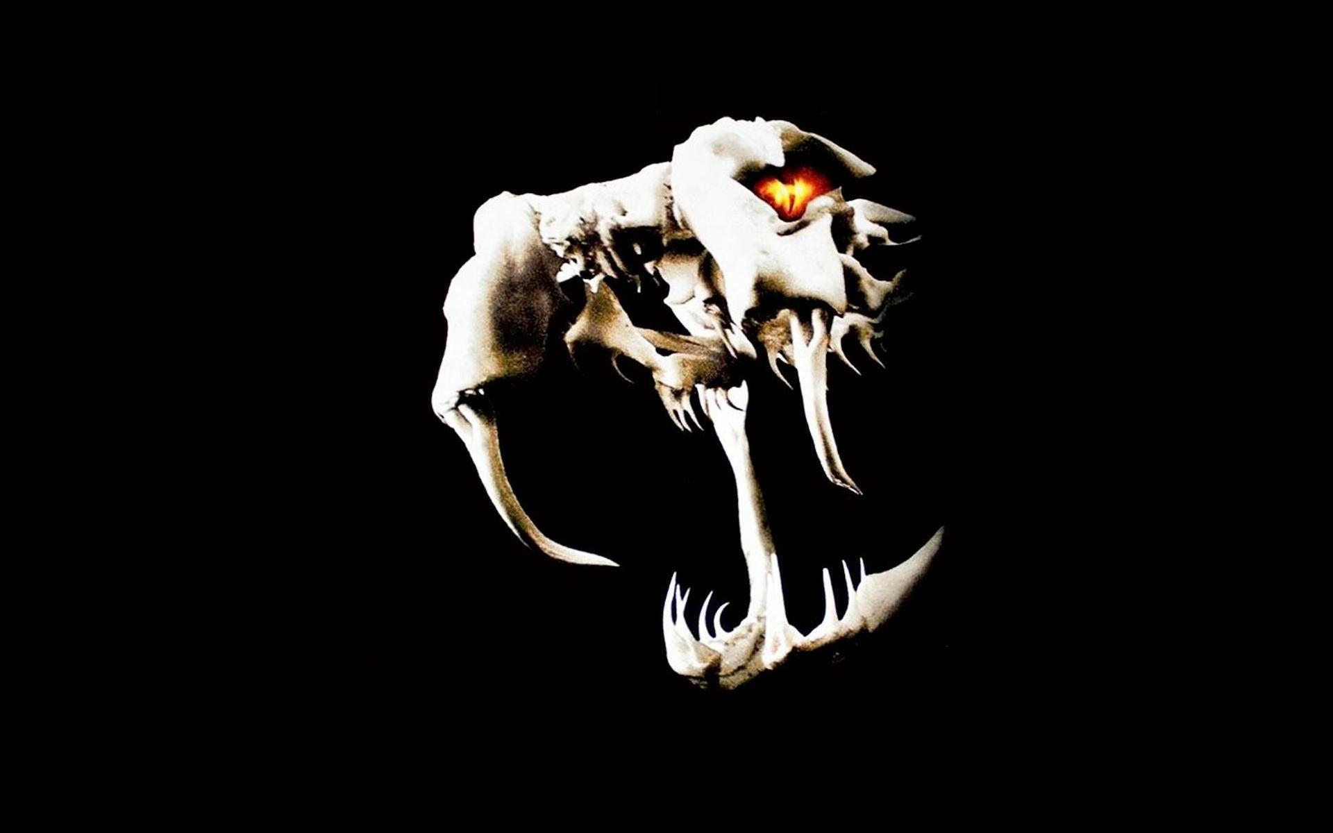Randy Orton Viper Logo Wallpapers - Wallpaper Cave