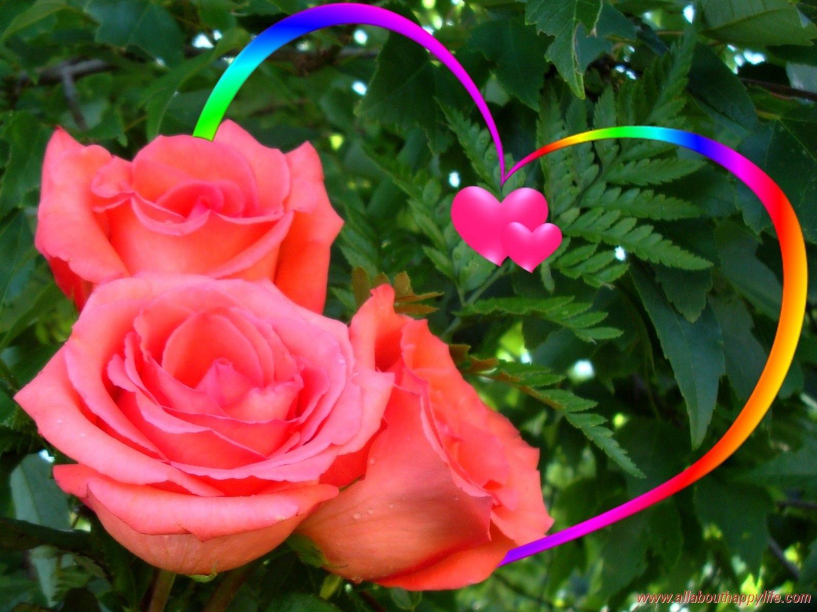 Для, картинки с поцелуями и цветами