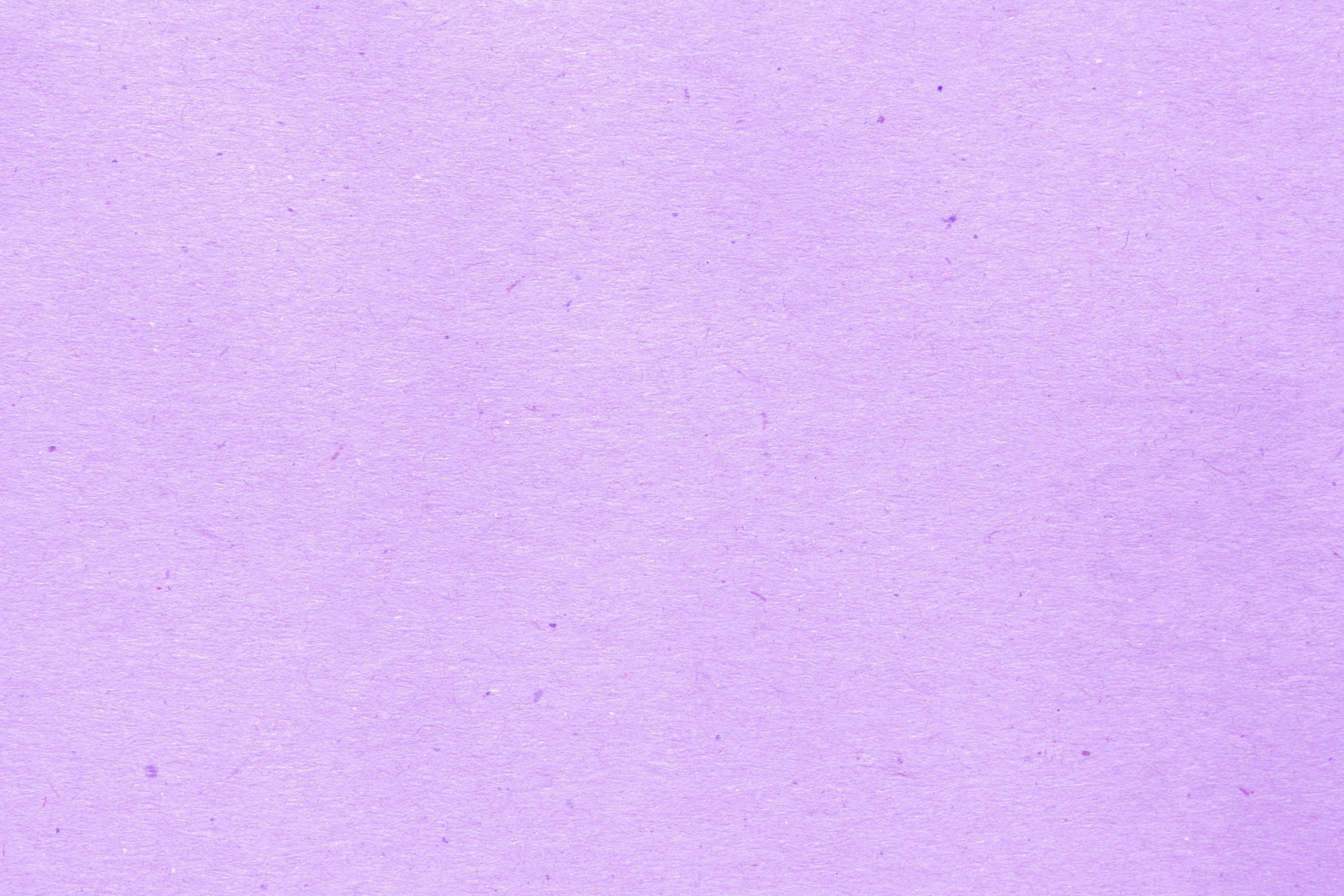 Plain Purple Backgrounds Wallpaper Cave