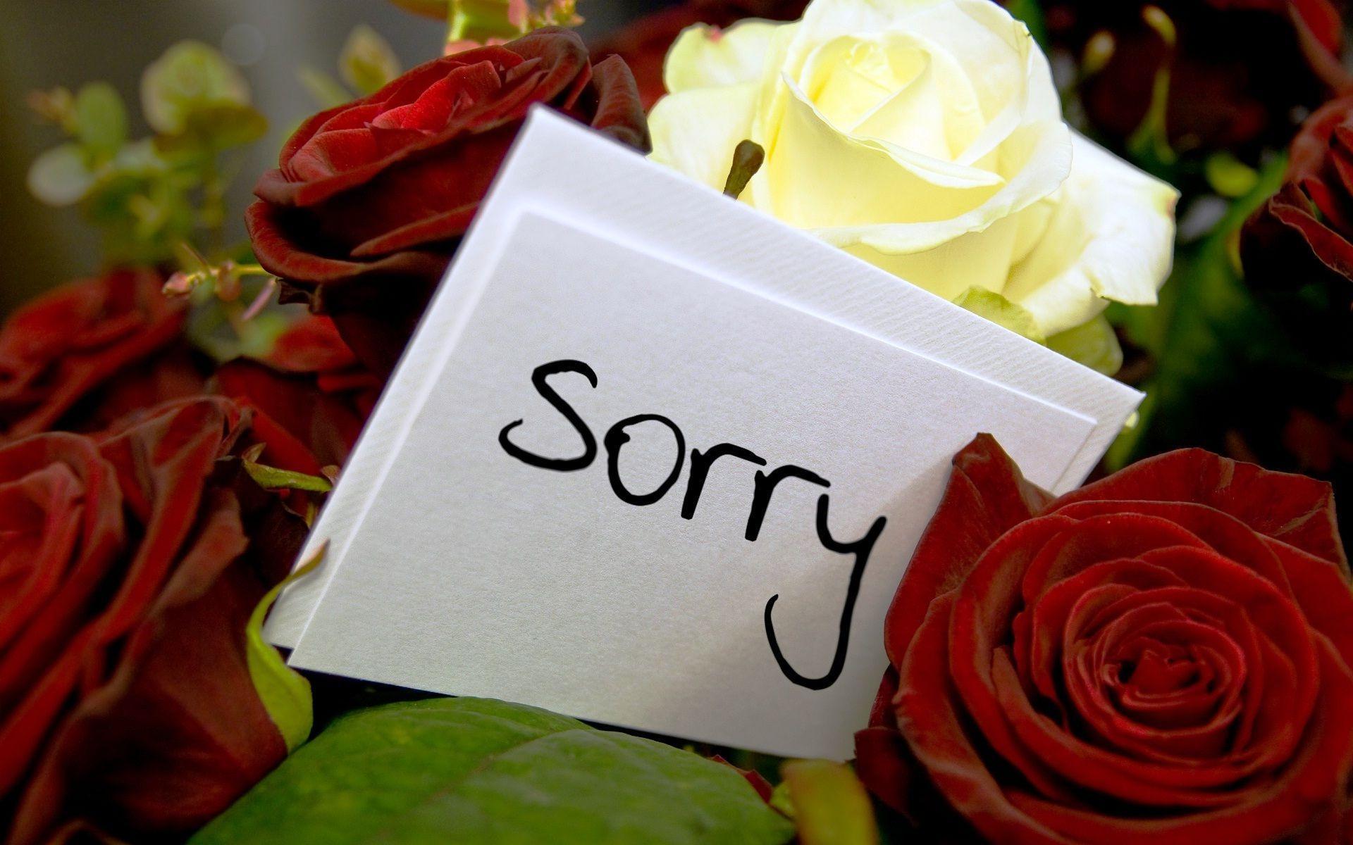 Бумагу марта, открытки розы прости