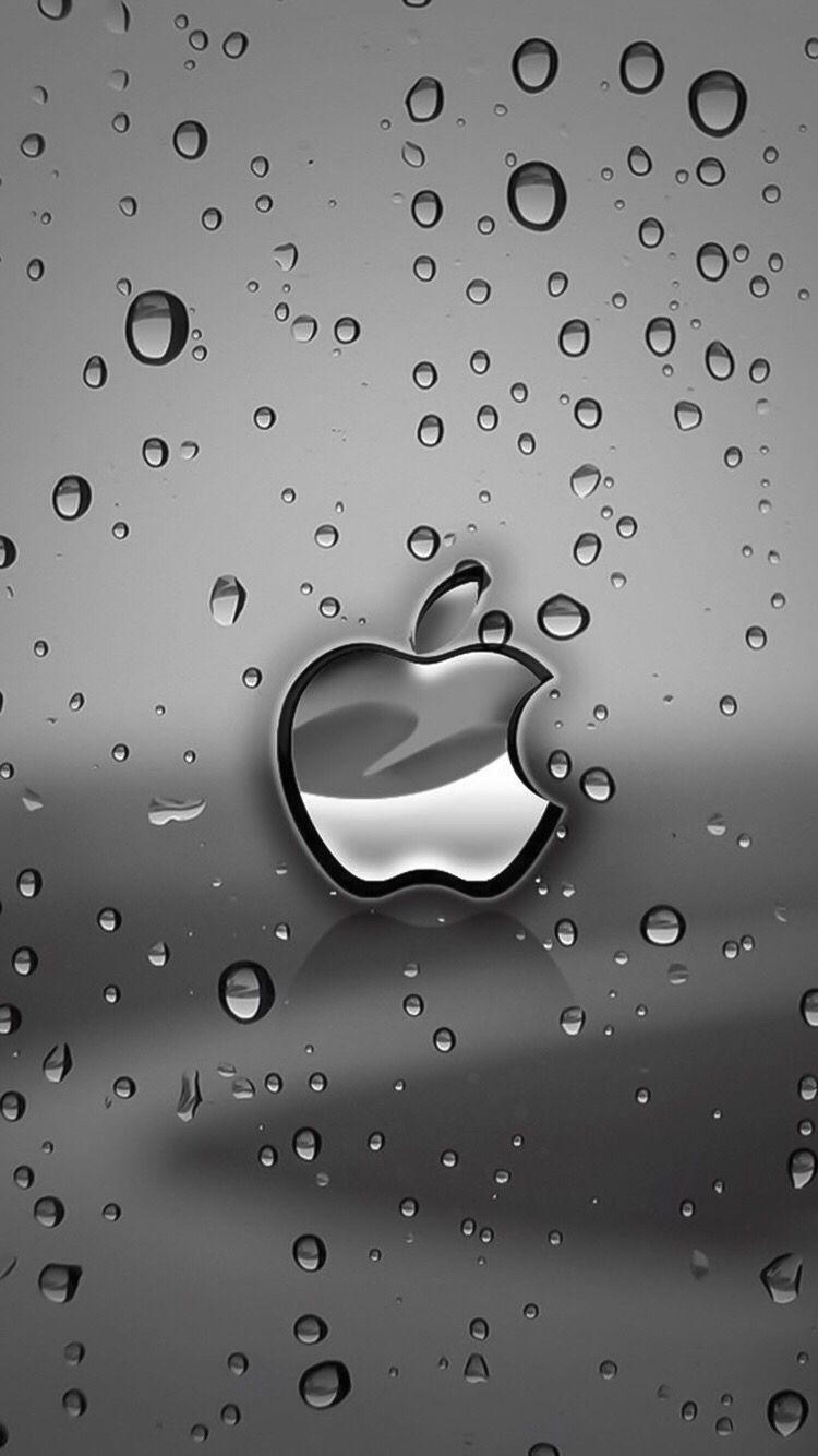Wallpapers iPhone Apple⚪