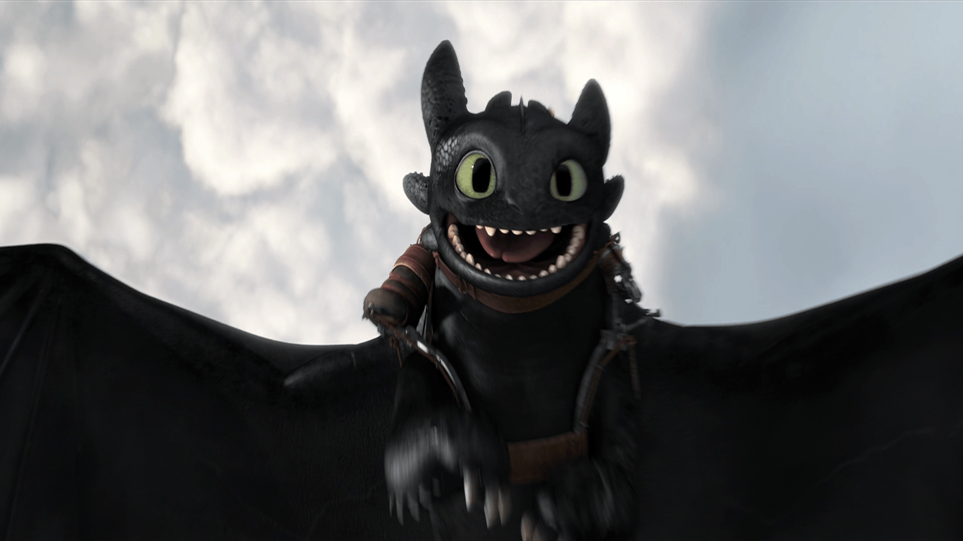 Toothless Dragon Wallpaper Cute