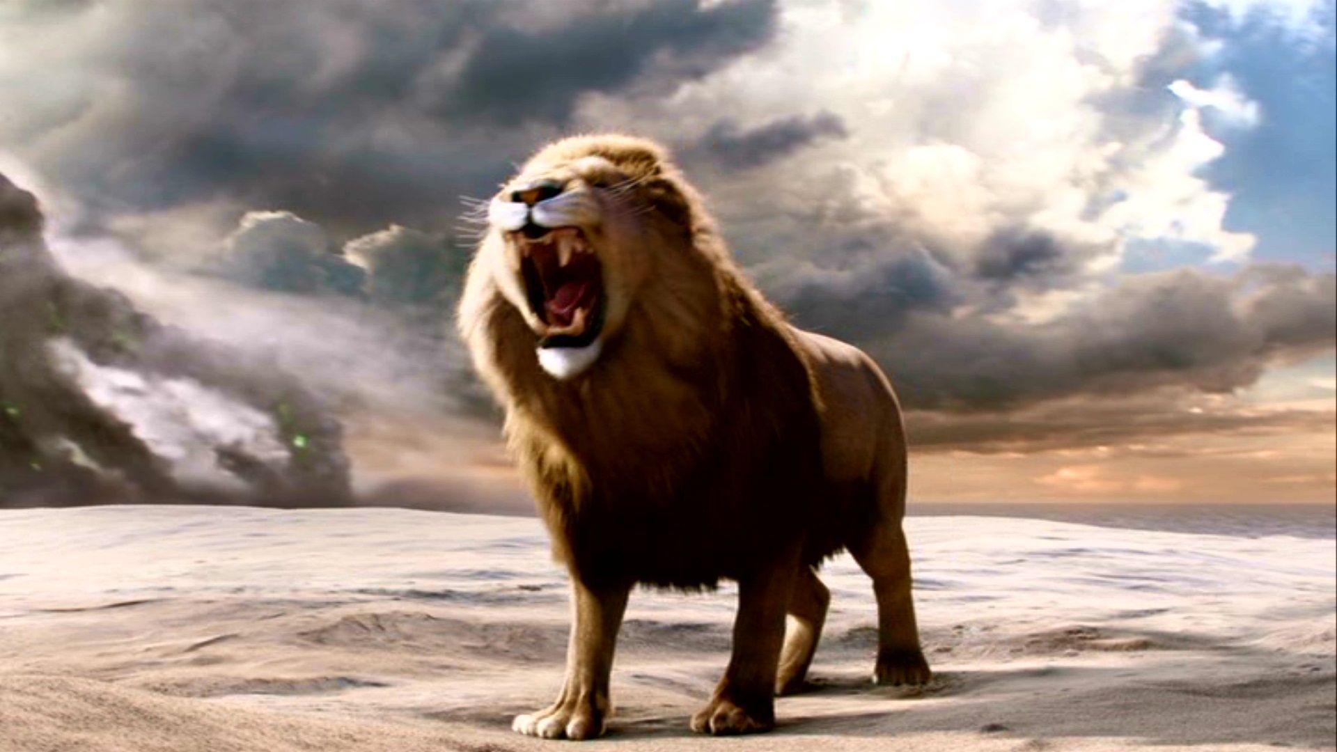 Aslan Roaring Wallpaper 8444