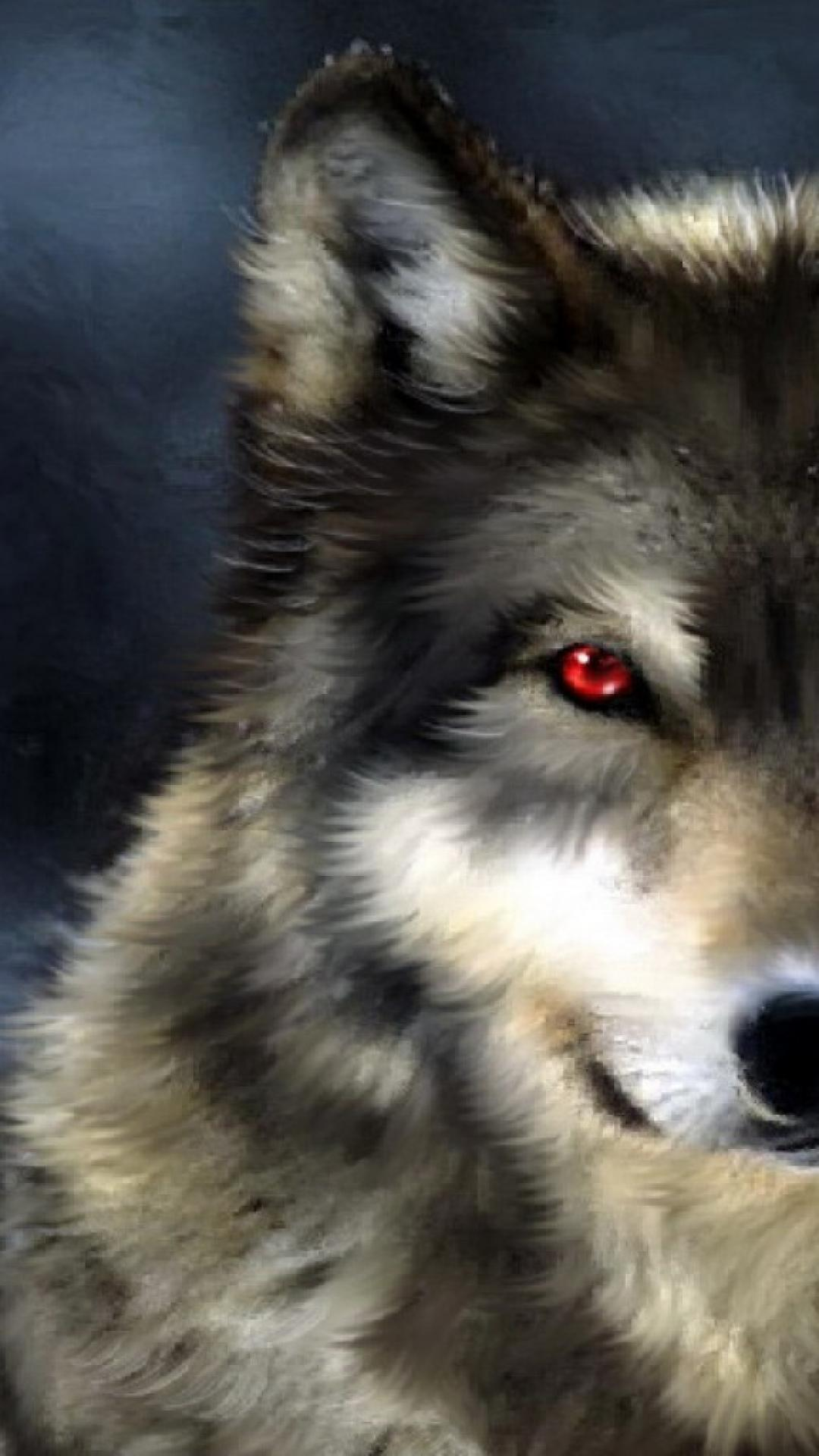 Wolf Eyes Wallpapers Wallpaper Cave
