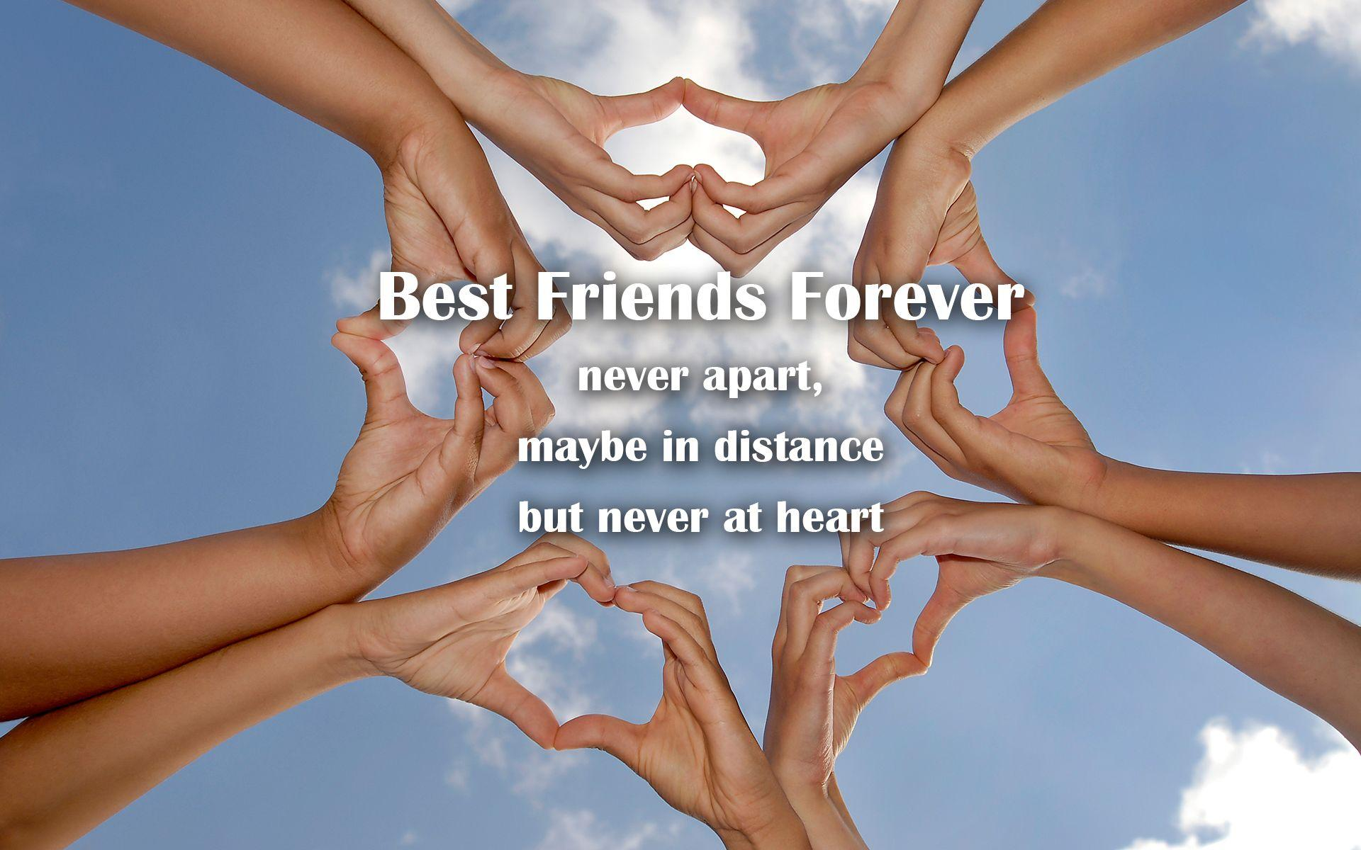 Best Friend Forever Wallpapers Hd Wallpaper Cave