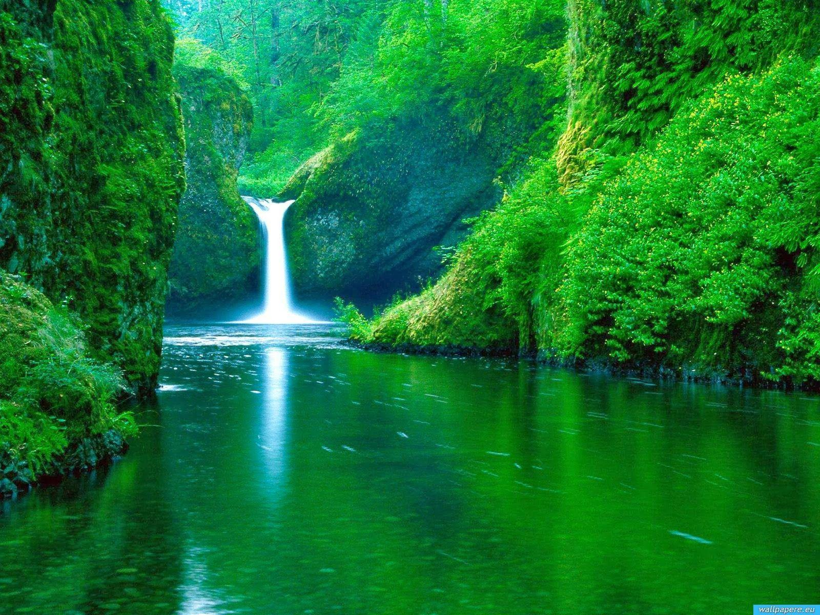 Nature Wallpapers Free Download - BDFjade