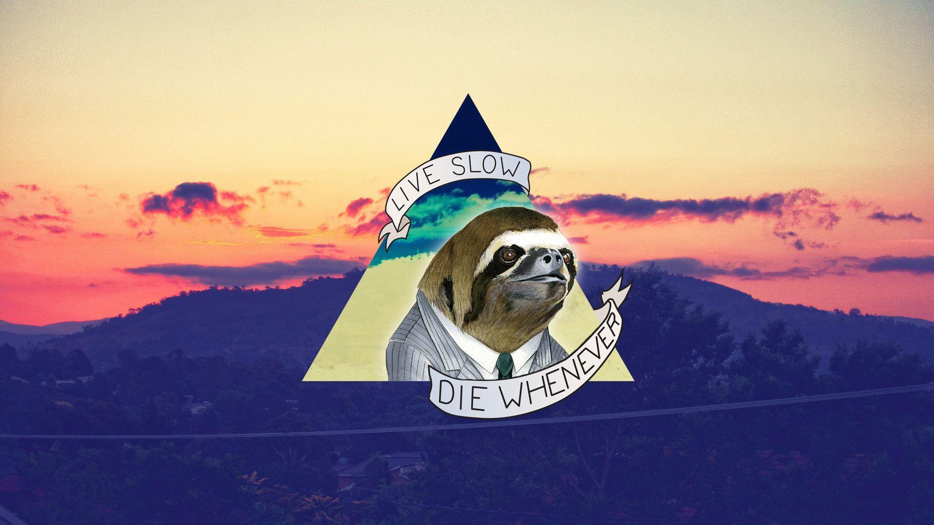 Sloth Wallpaper Is Best