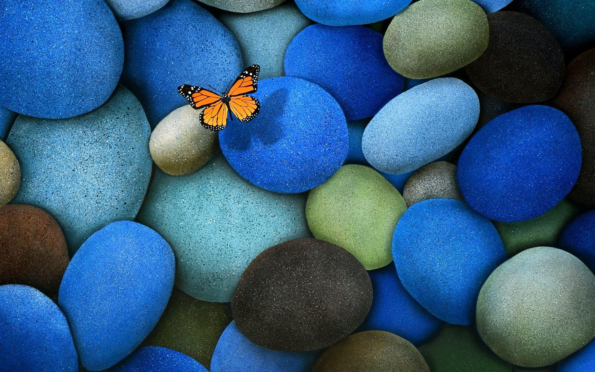 Orange butterfly on blue, green and black pebble illustration HD ...