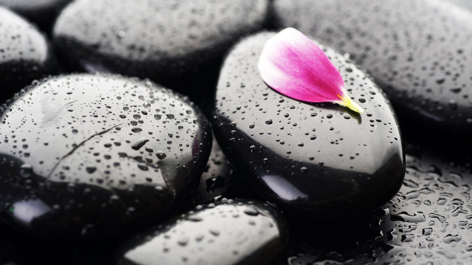 Full HD Wallpaper pebble drop water petal, Desktop Backgrounds HD 1080p
