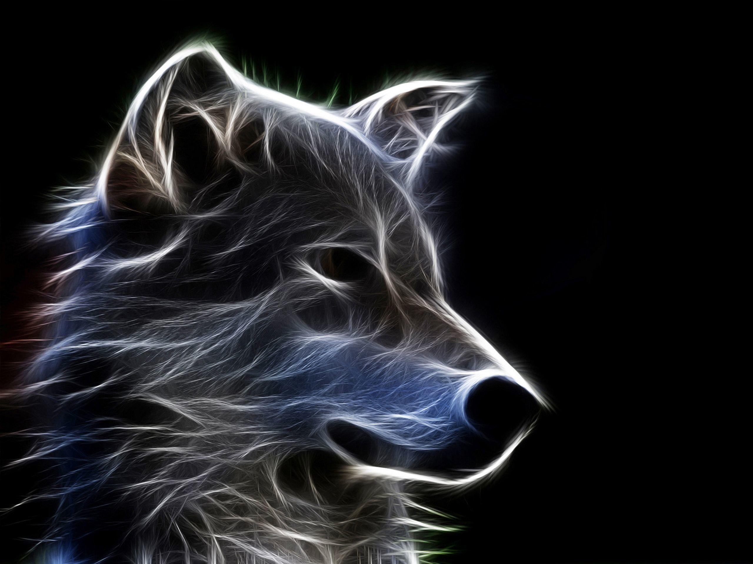 Tribal Wolf Wallpapers Wallpaper Cave