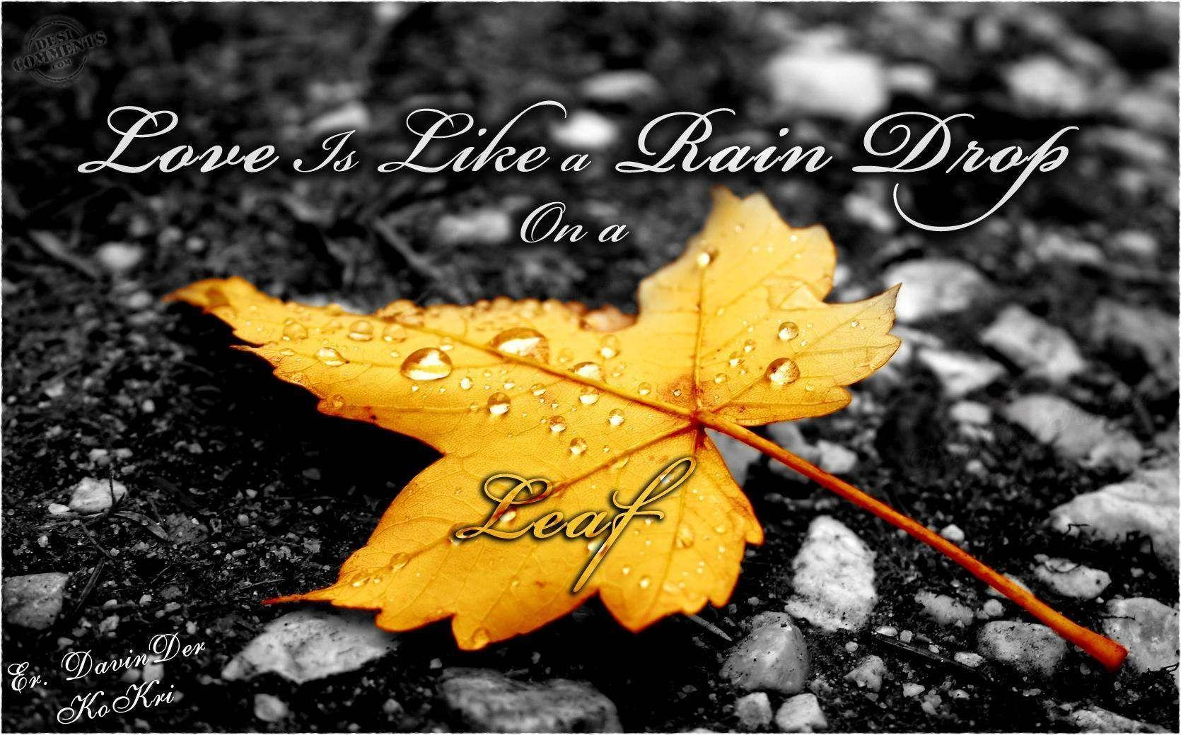 Beautiful Rain Drops Wallpapers With Quotes Wallpaper Cave