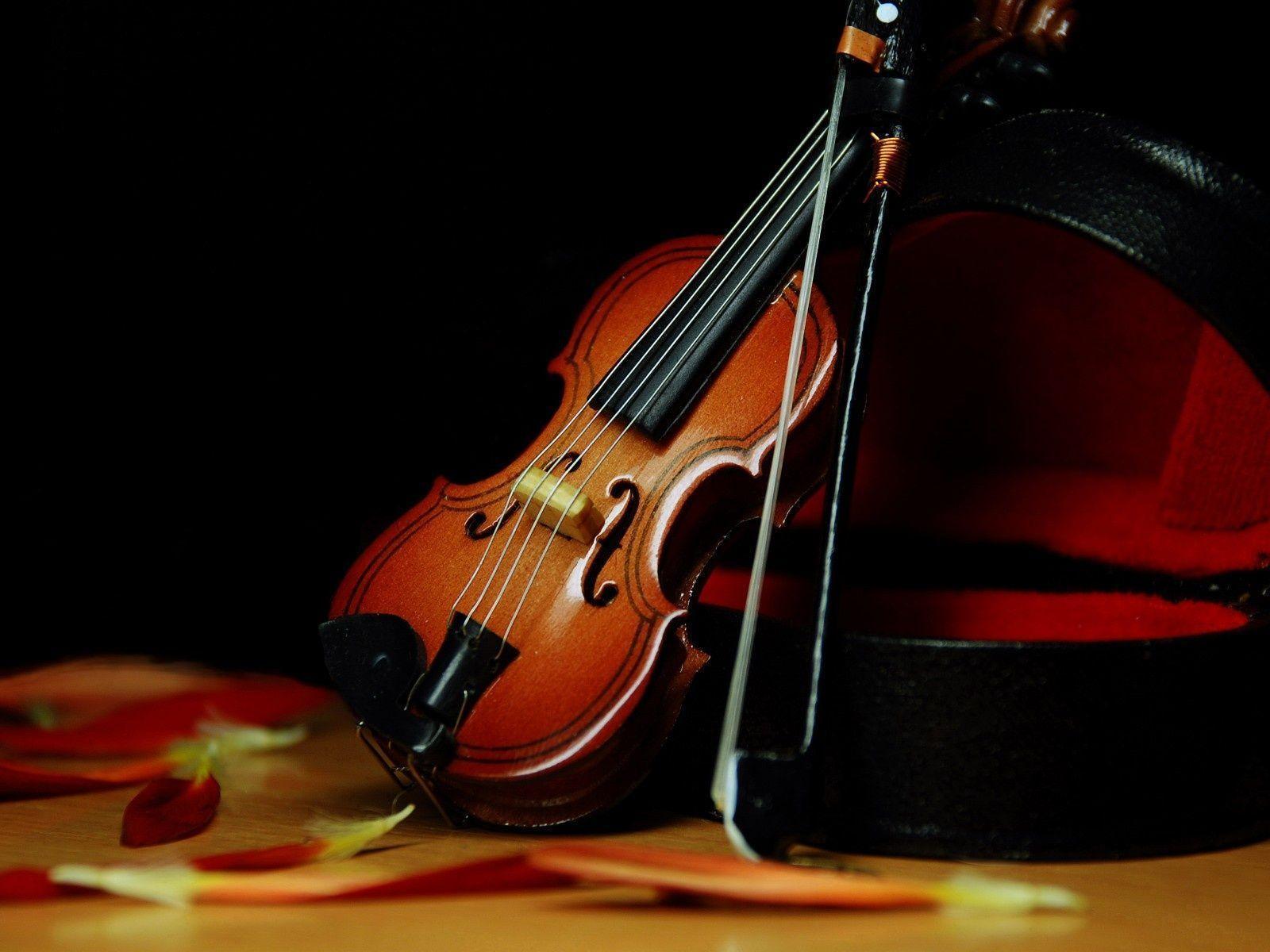 Beautiful Violin Wallpapers - Wallpaper Cave