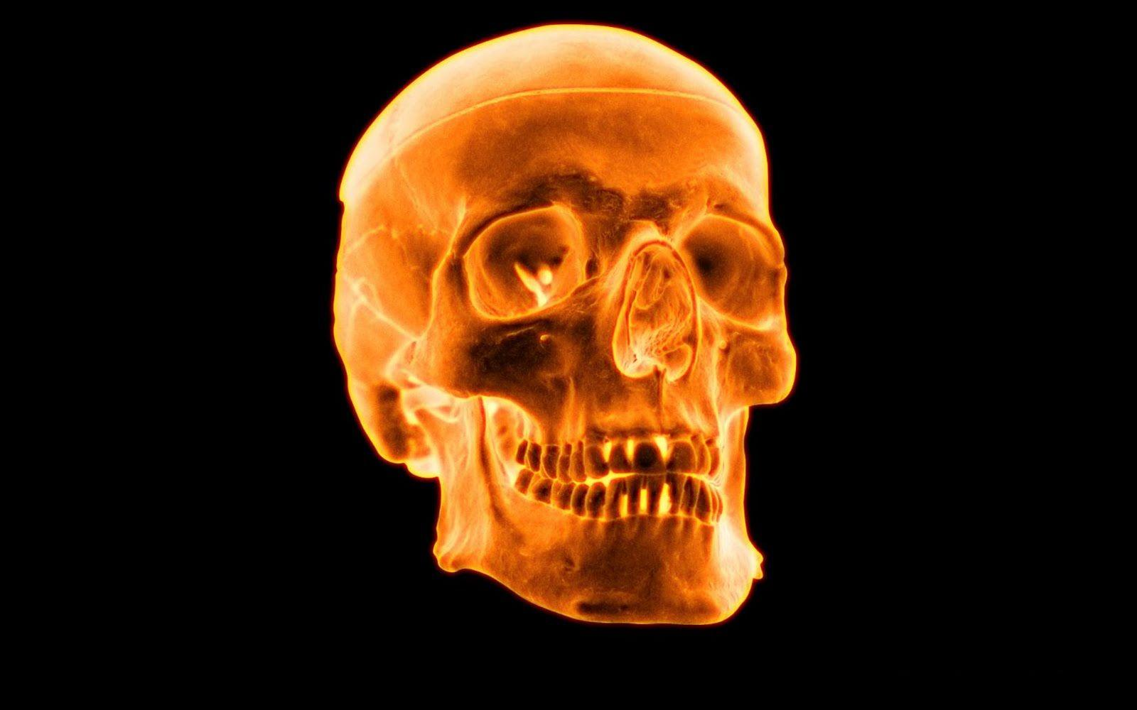 Cool 3d Flaming Skull Wallpapers