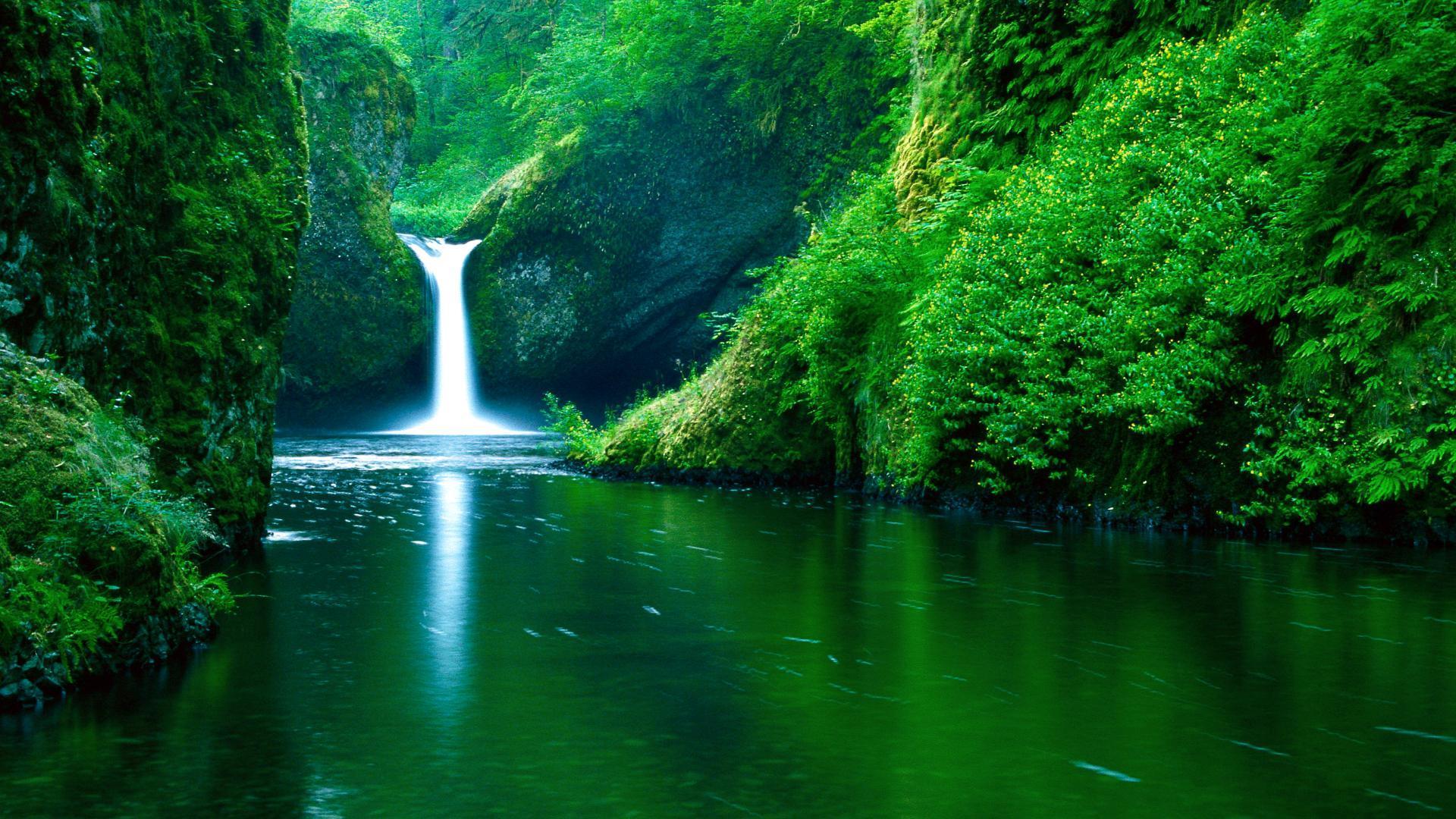 Hd Wallpapers For Desktop Nature Widescreen