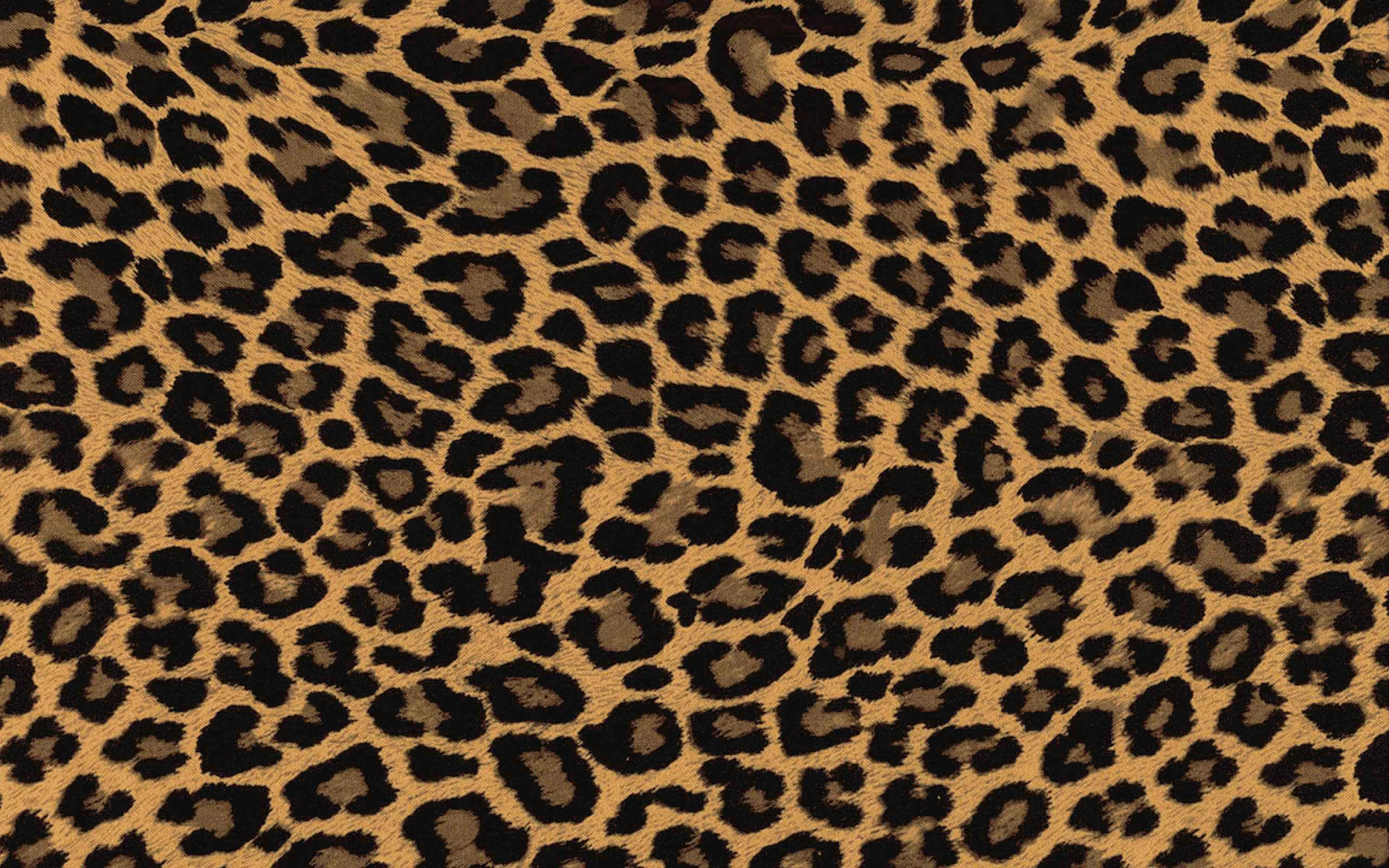 Pink Leopard Print Wallpapers - Wallpaper Cave