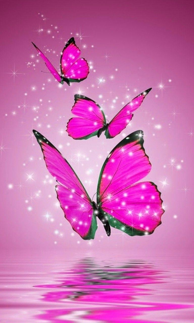 Butterfly New Wallpapers Wallpaper Cave