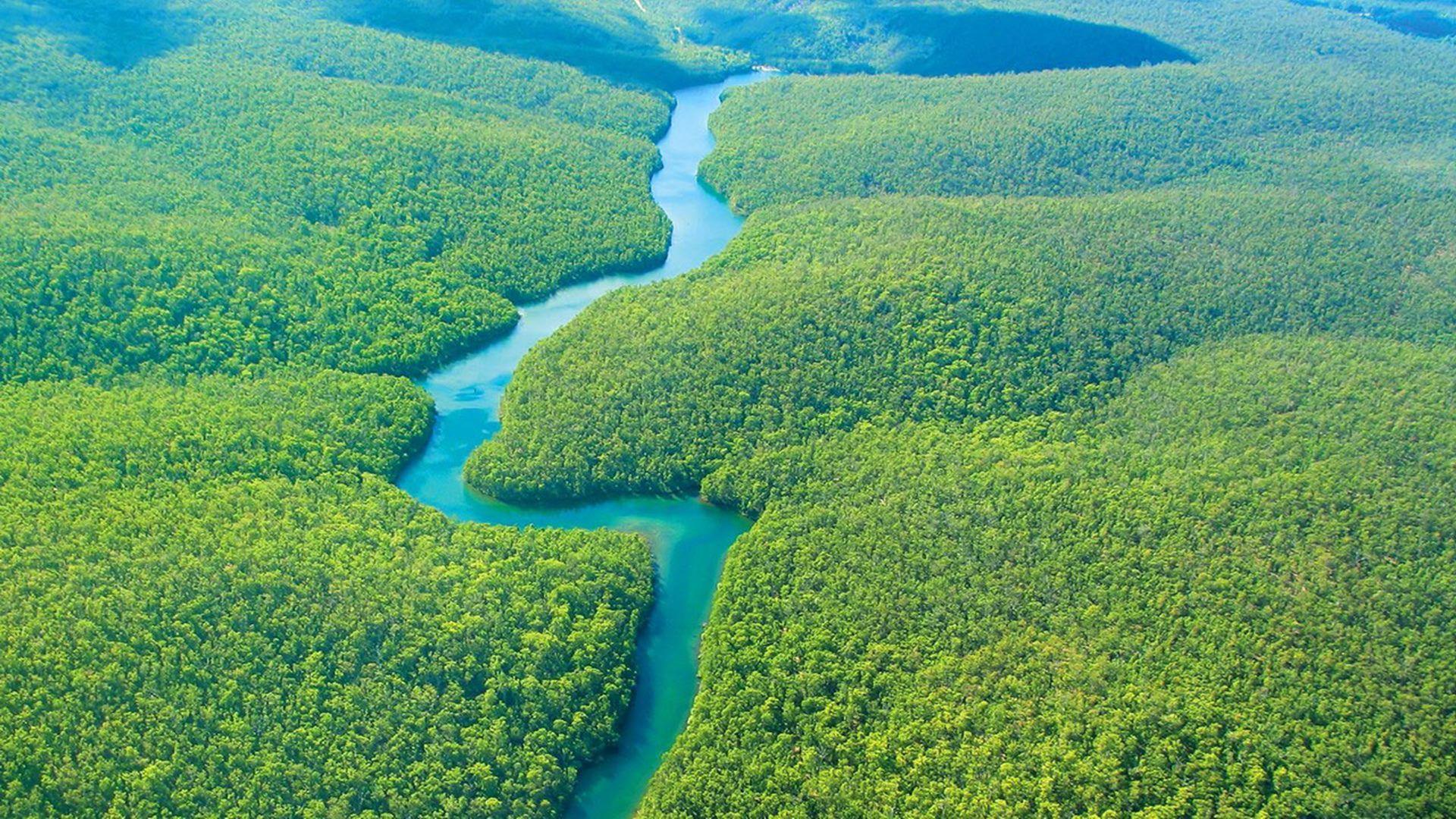 Amazon Rainforest HD Wallpapers - Wallpaper Cave