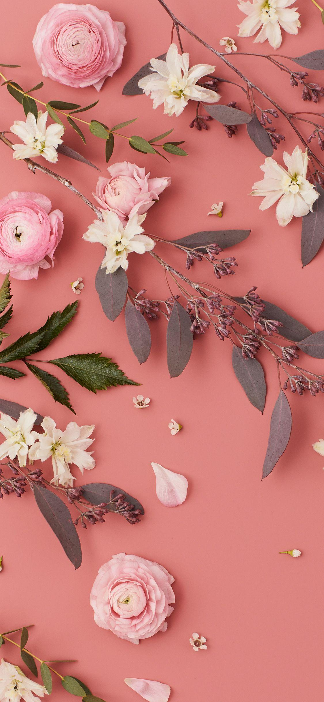 Wallpapers Pink Flower - Wallpaper Cave