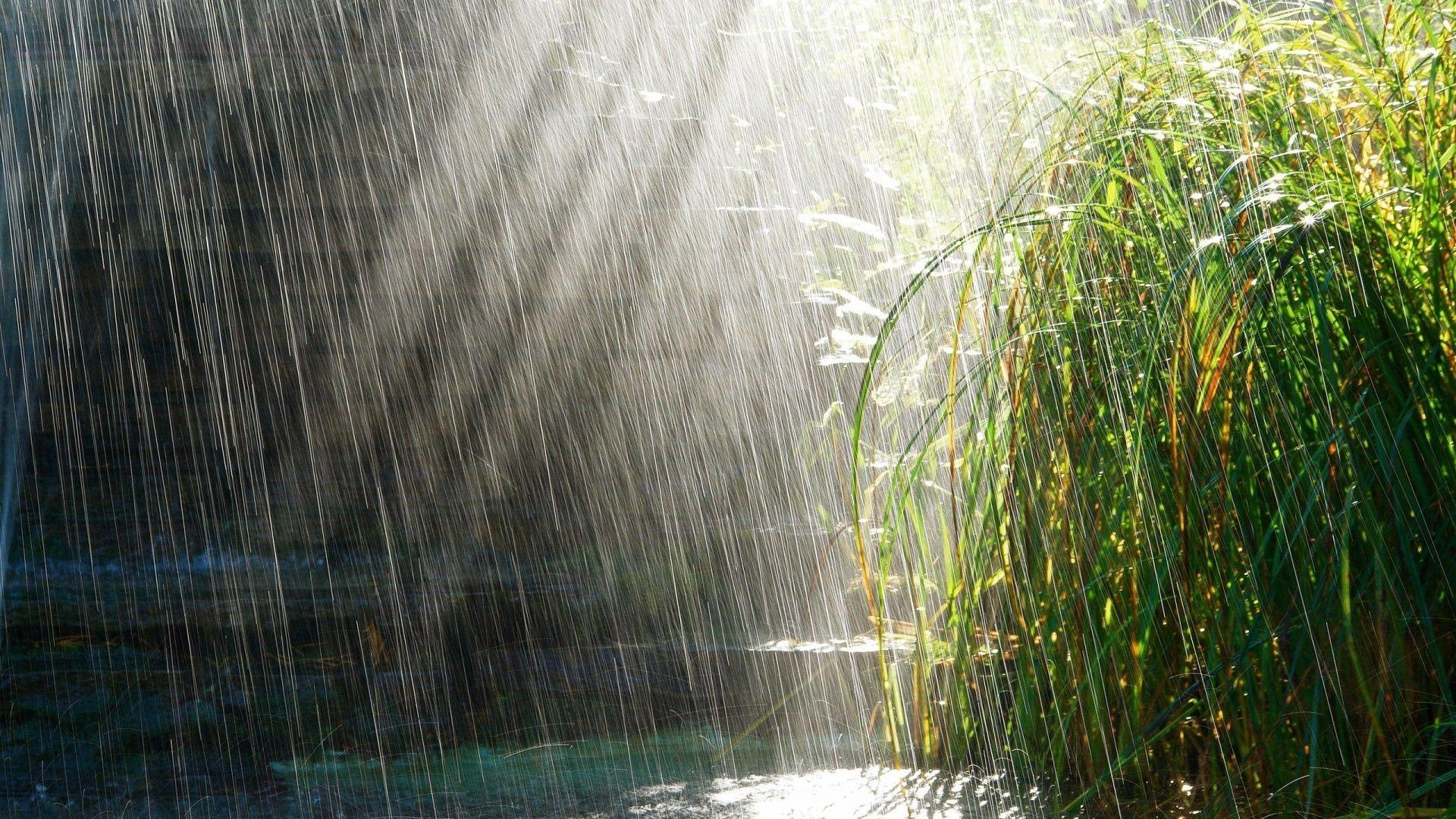Happy Monsoon Wallpapers Hd Wallpaper Cave