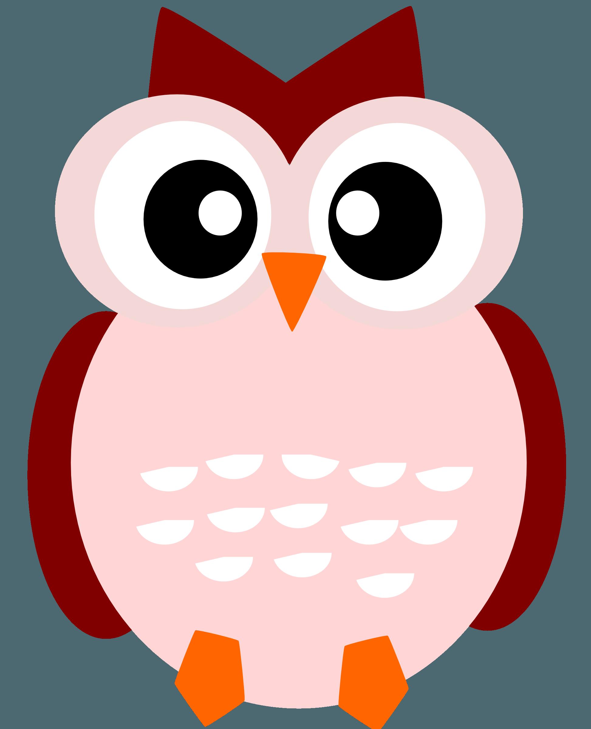 Wallpapers Owl Kartun Wallpaper Cave