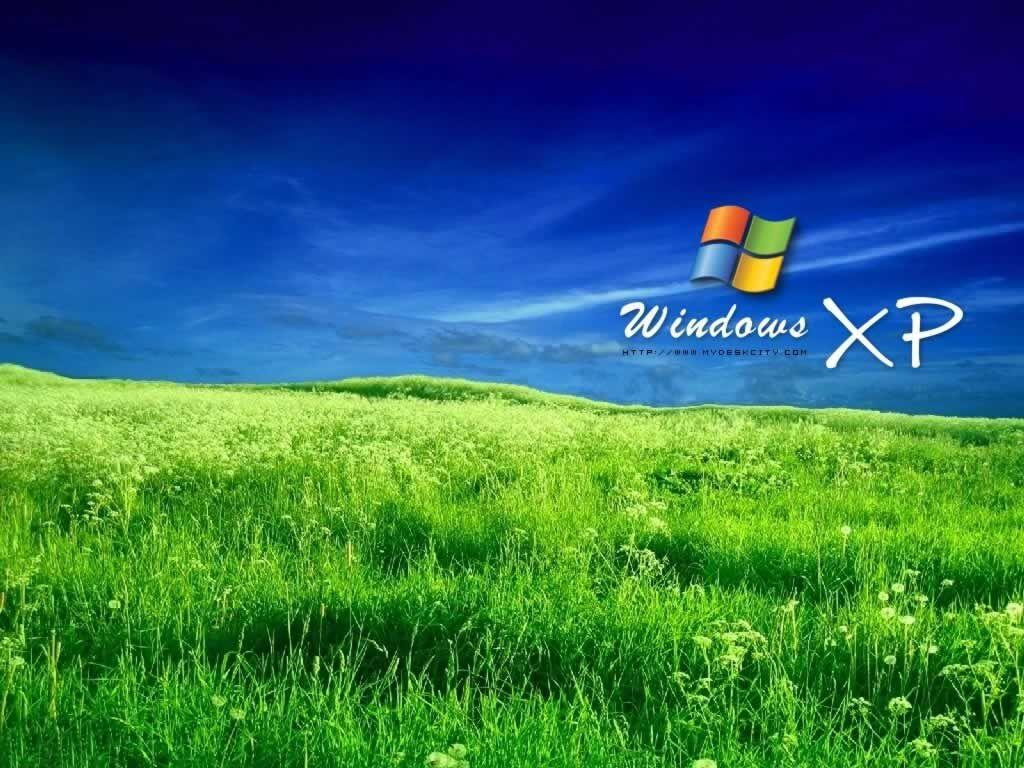 Windows Xp Basic Wallpapers Hd Wallpaper Cave
