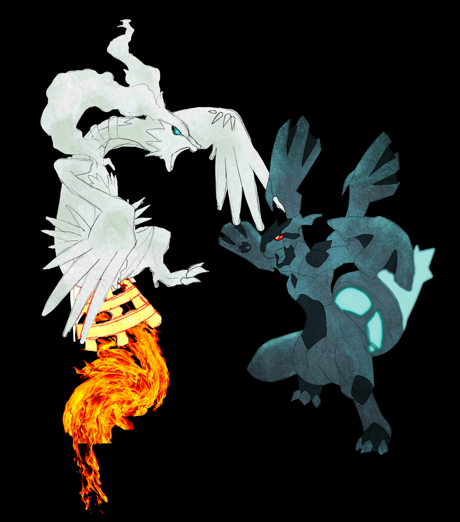 Pokemon Black/white images Zekrom and Reshiram HD wallpaper and ...