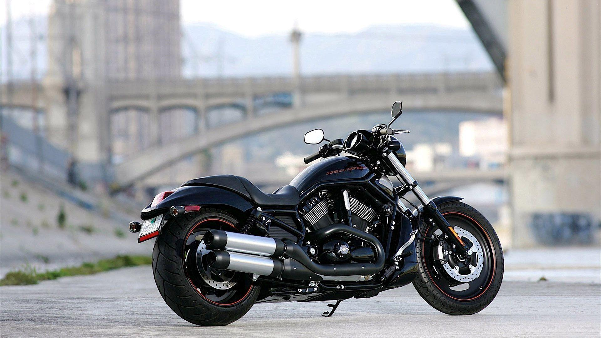 New Harley Davidson on Road HD Photo Backgrounds