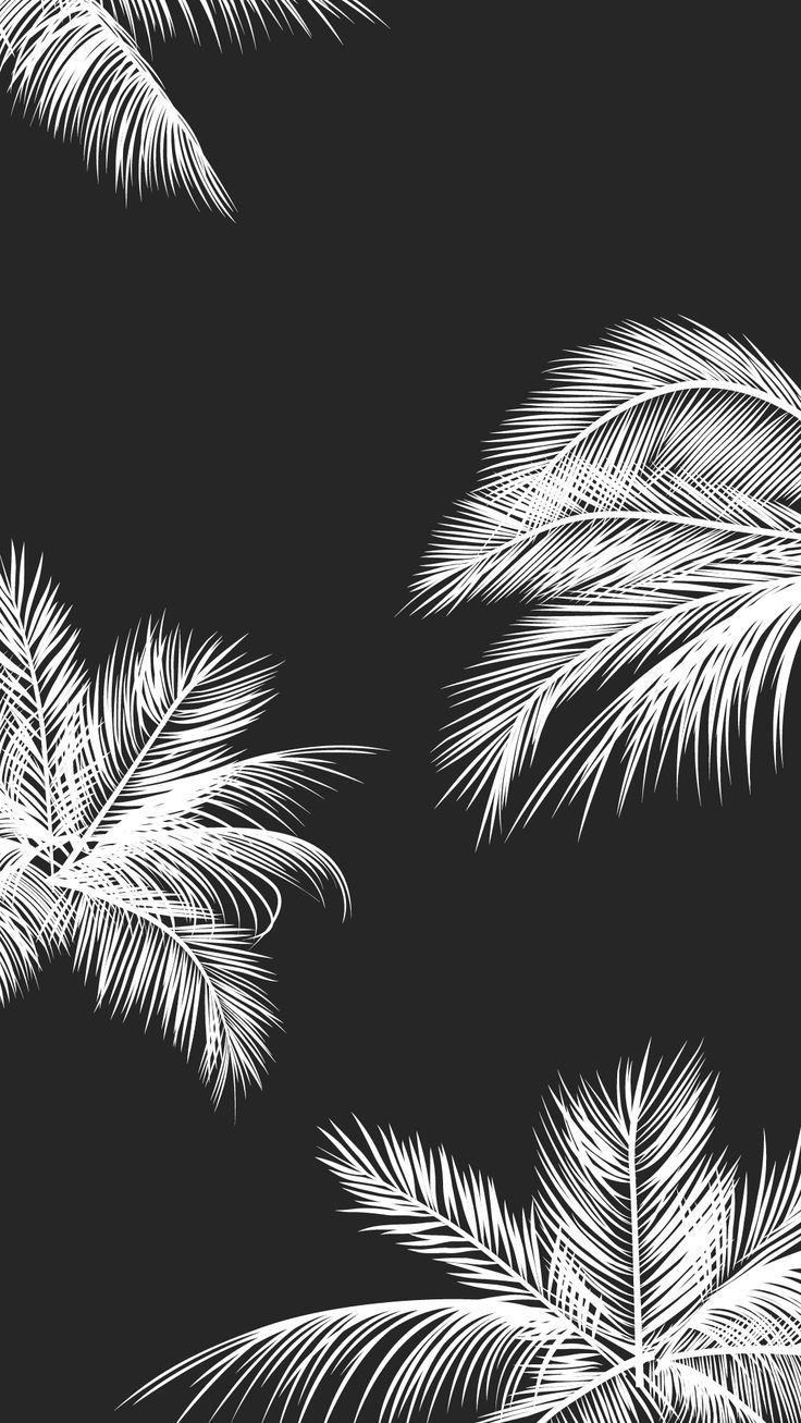 Black white palm leaves palm trees like and repin noelito flow