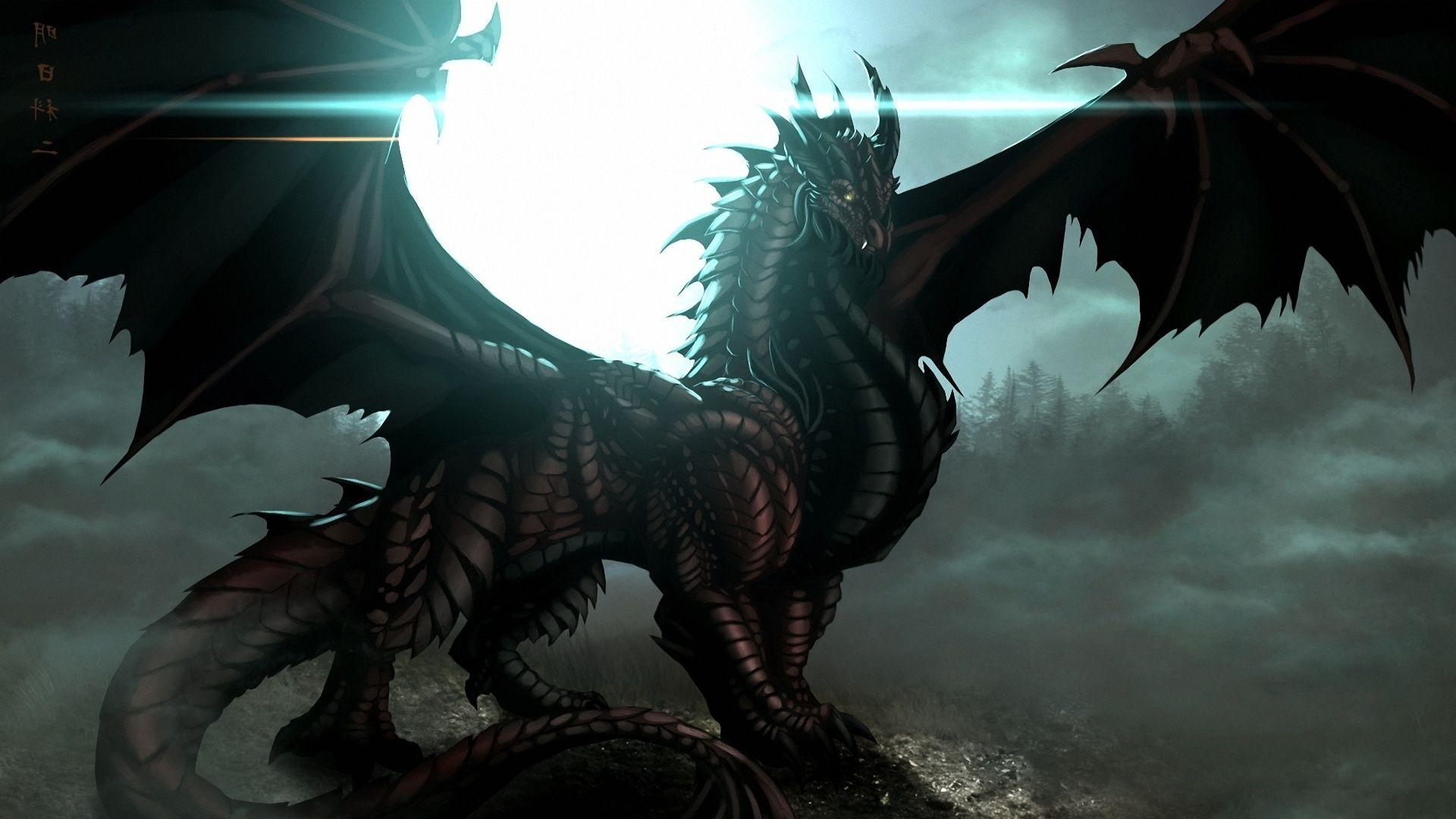 Dragon HD Wallpapers 1080p Ch37d