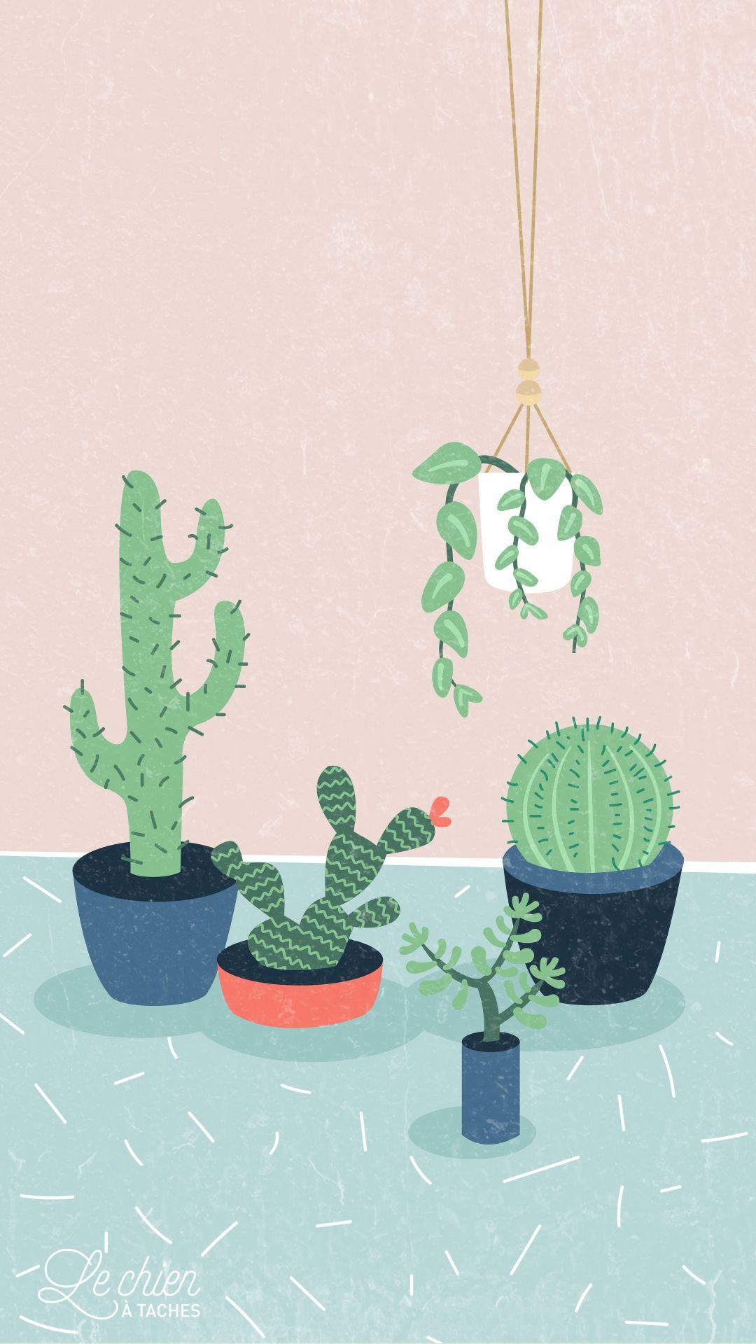 Cute Cactus Wallpapers Wallpaper Cave