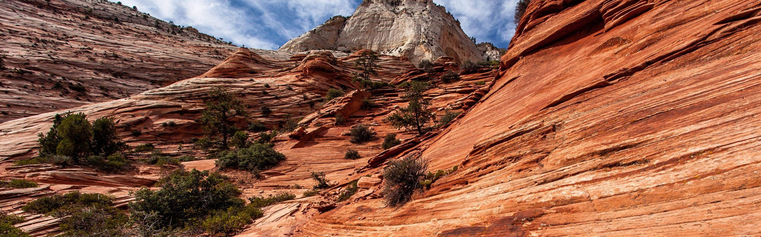5k Zion National Park, Utah - America Background #99768 | HD ...
