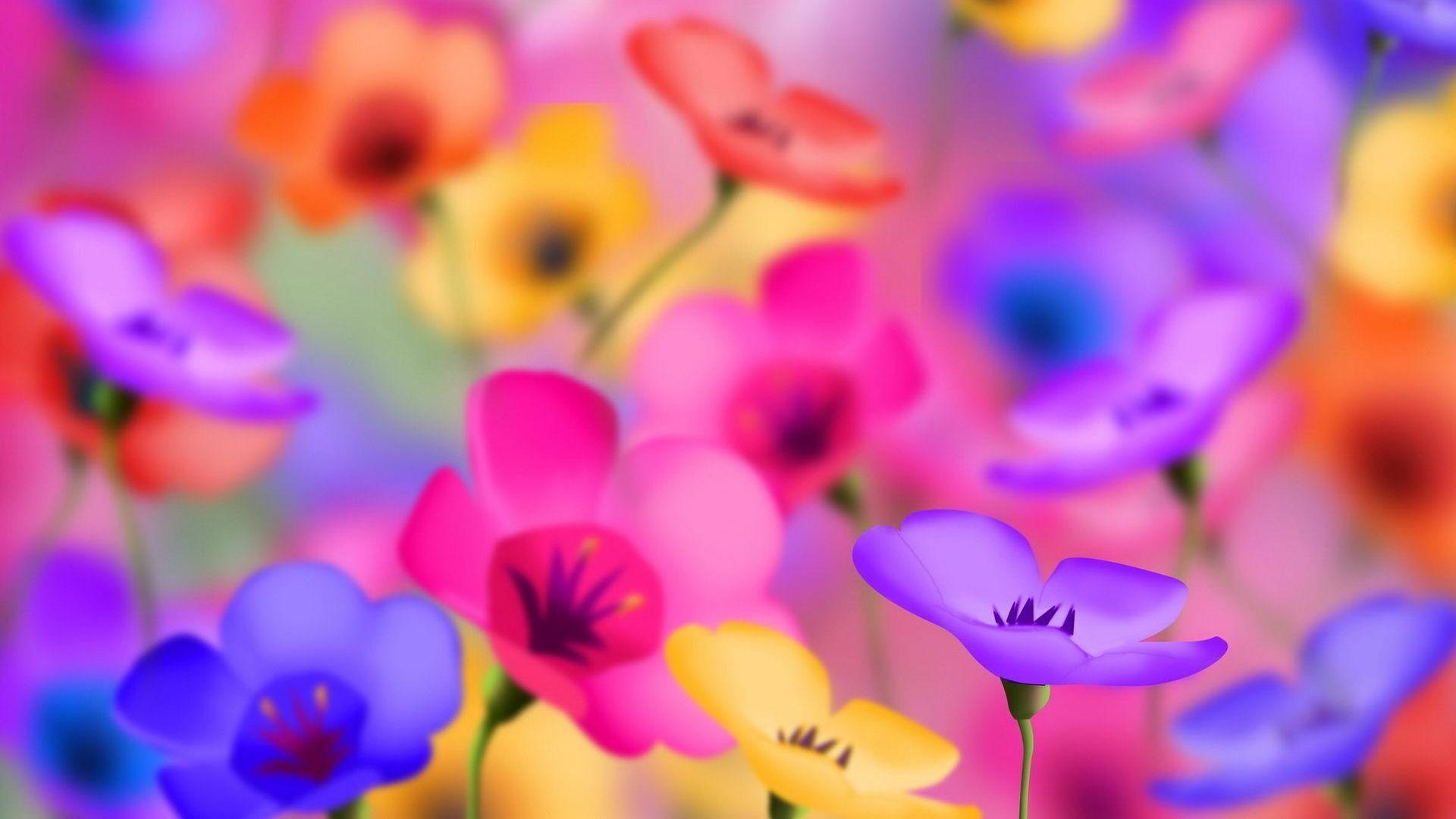 Beautiful Colorful Flowers Wallpapers Wallpaper Cave