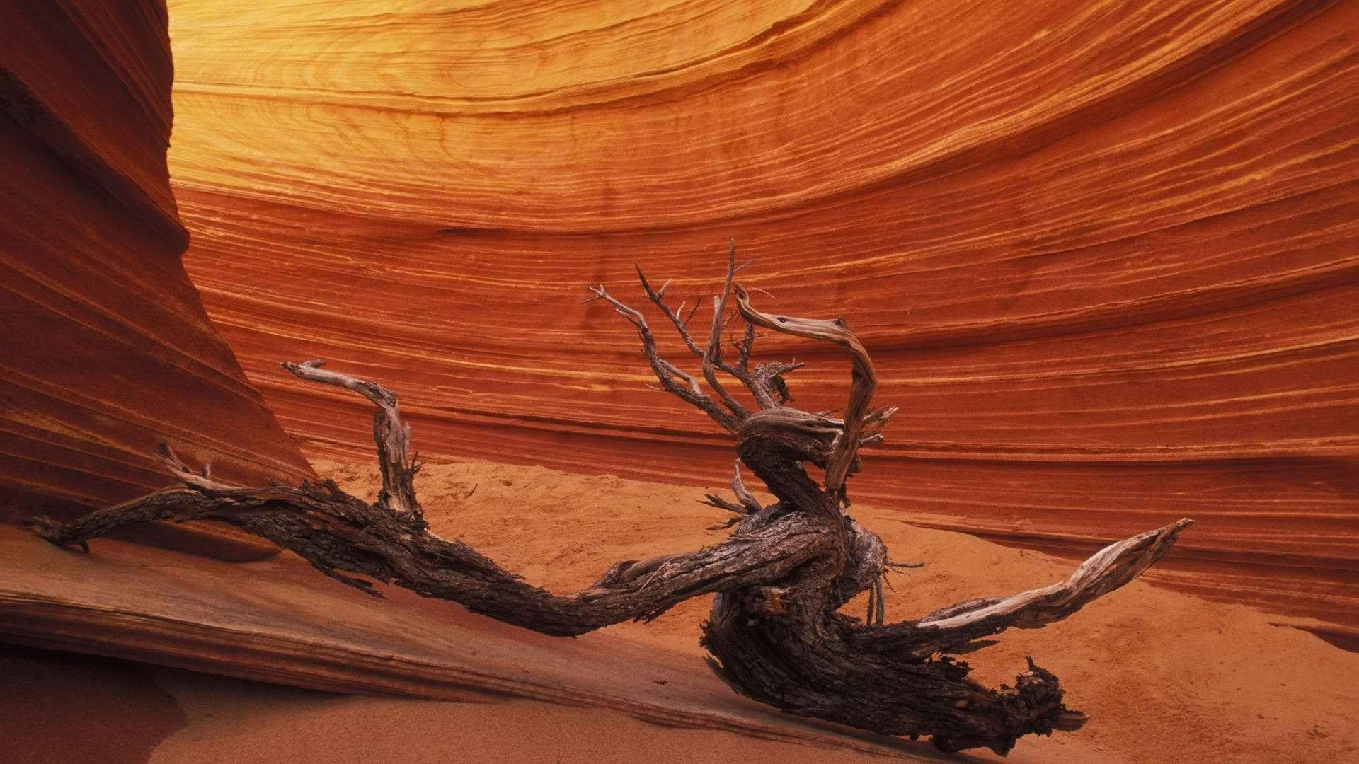Antelope Canyon Photography Wallpapers 50997 1920x1080 px