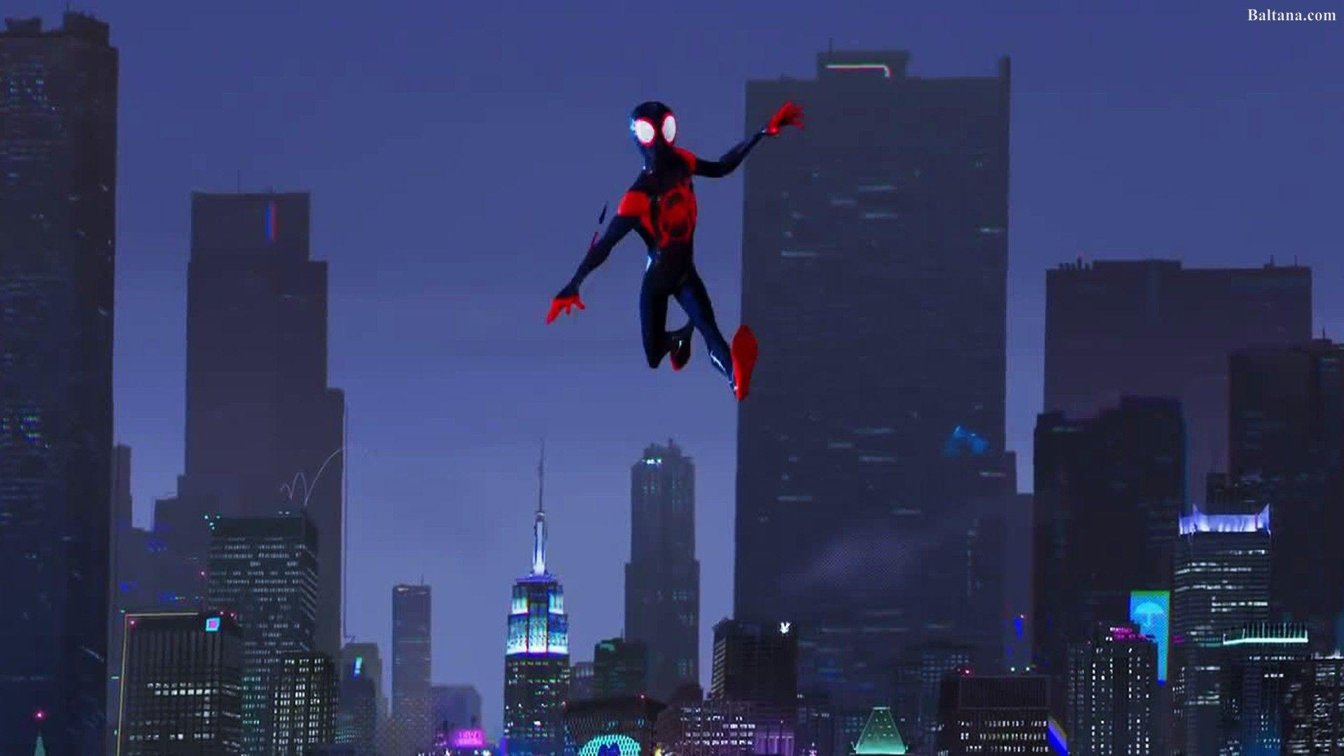 Spiderman Into The Spider Verse Animated Movie HQ Desktop Wallpaper .