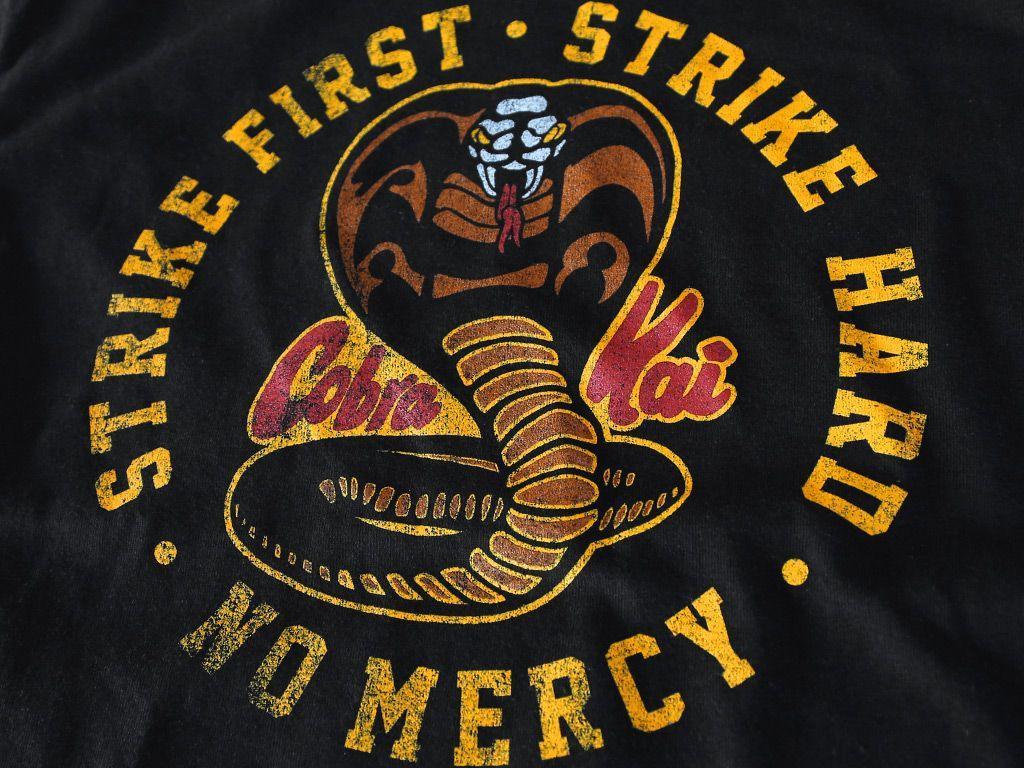 Cobra Kai Teams Background 2