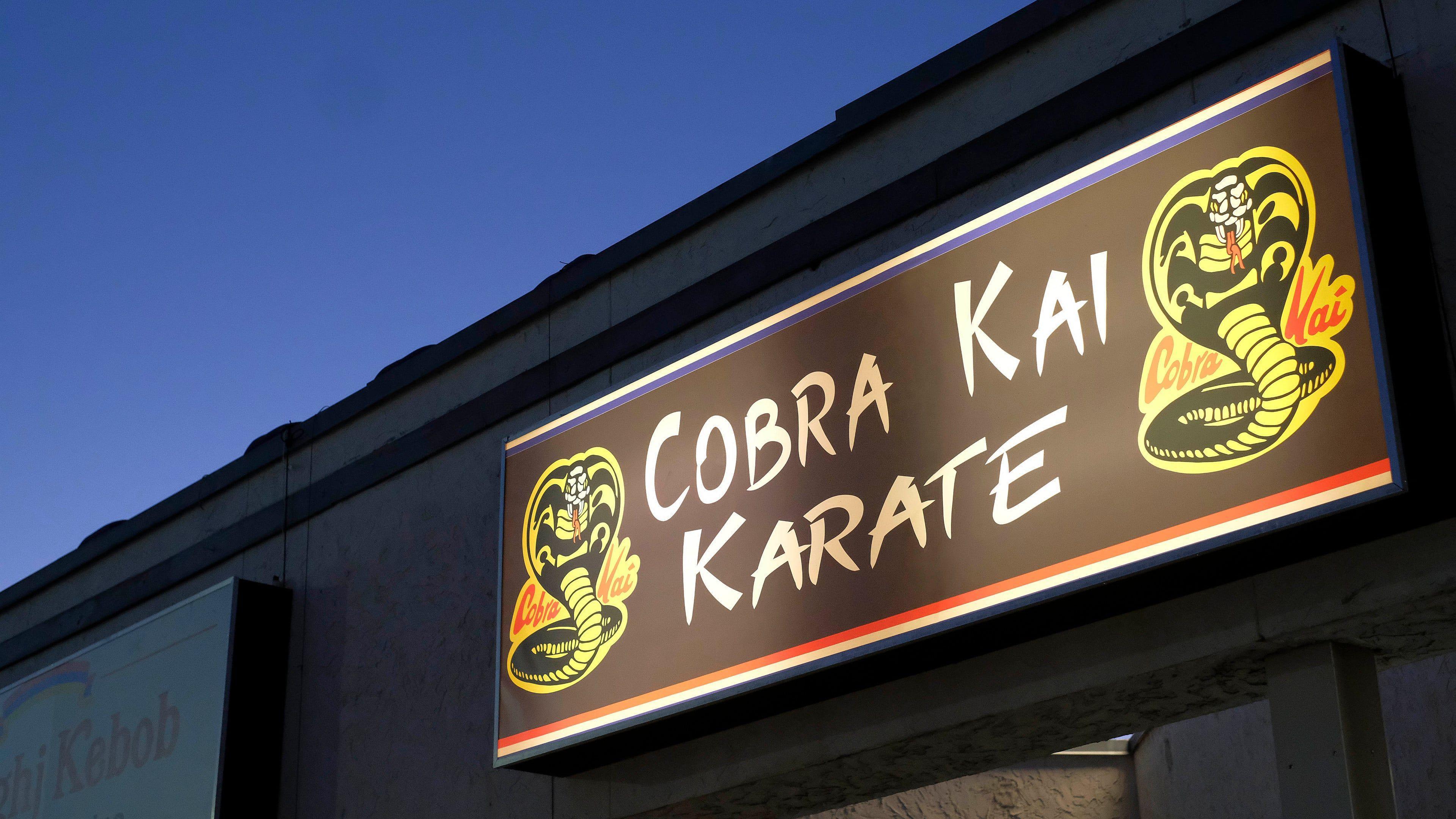 Cobra Kai Background 8