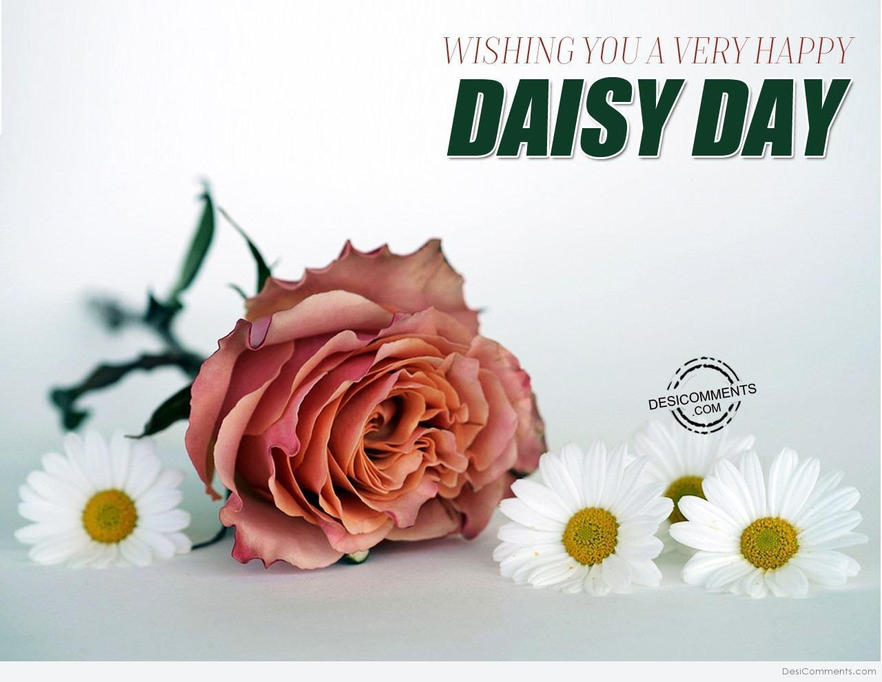 Upsy Daisy Day Wallpapers Wallpaper Cave