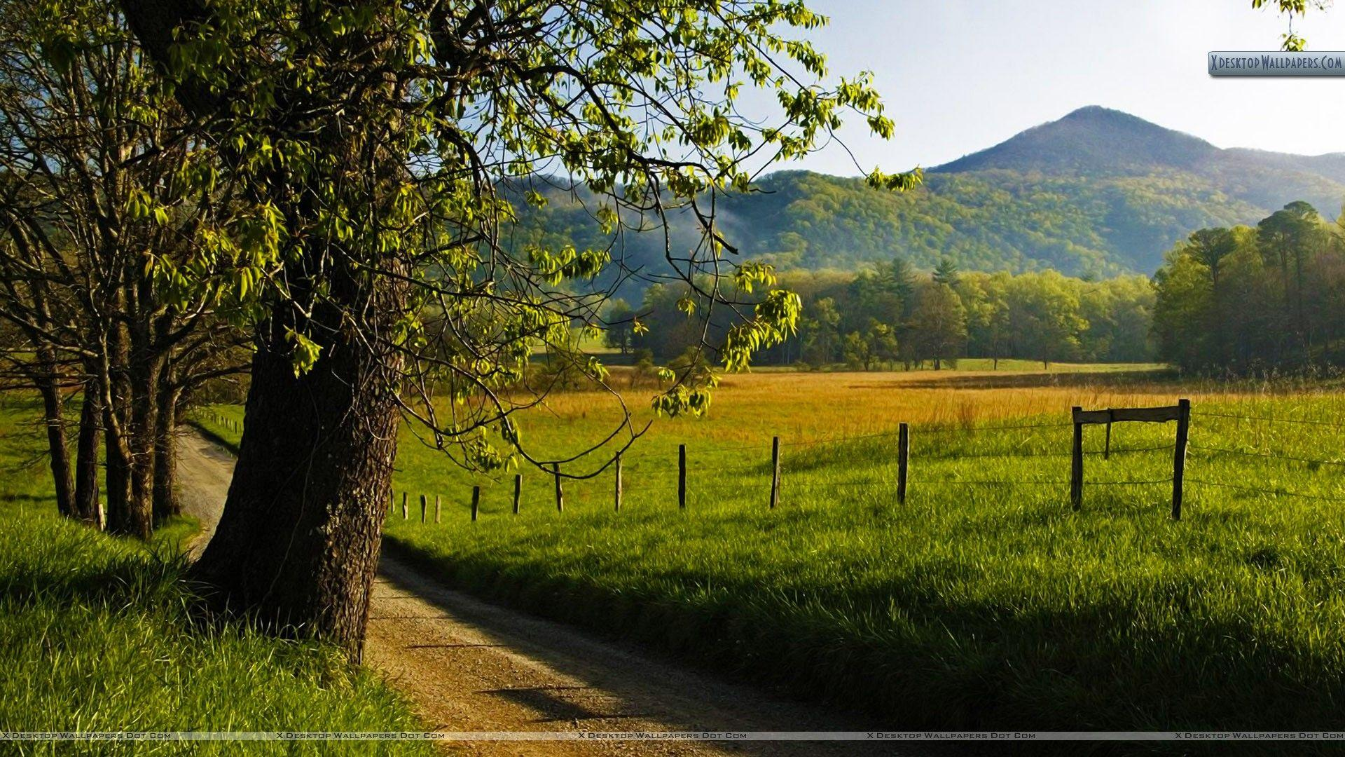Hyatt Lane in Spring, Great Smoky Mountains, Tennessee Wallpapers