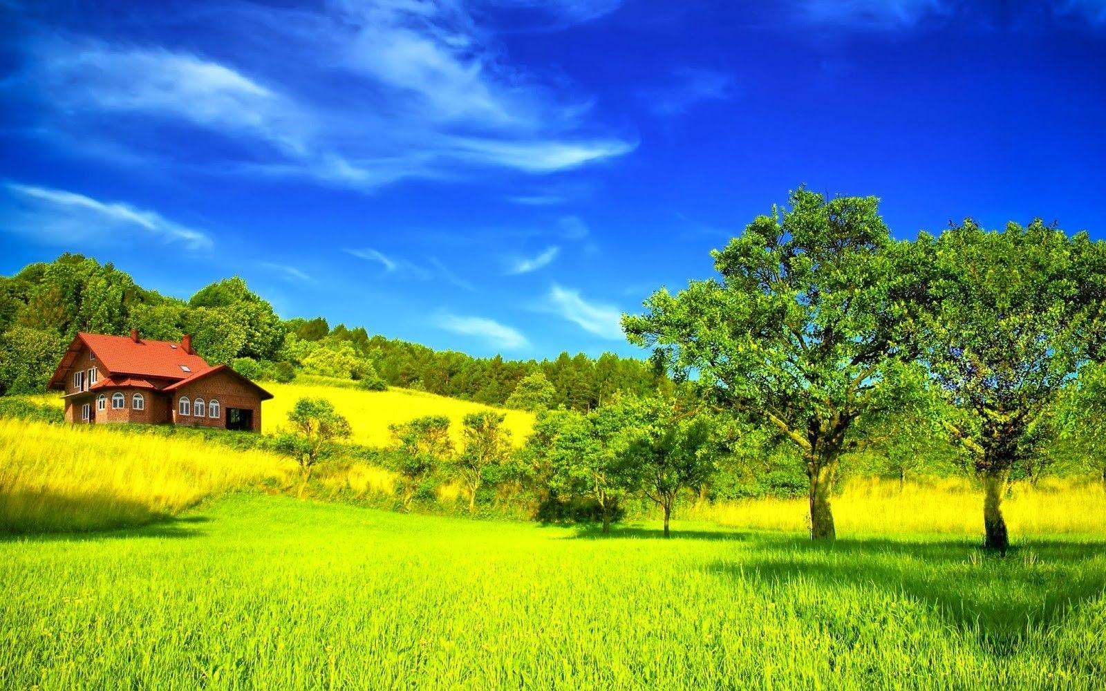 Desktop Beautiful Summer Season Hd With Nature Most Green Mountains