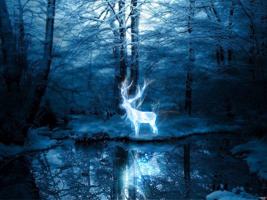 Patronus Wallpapers Wallpaper Cave