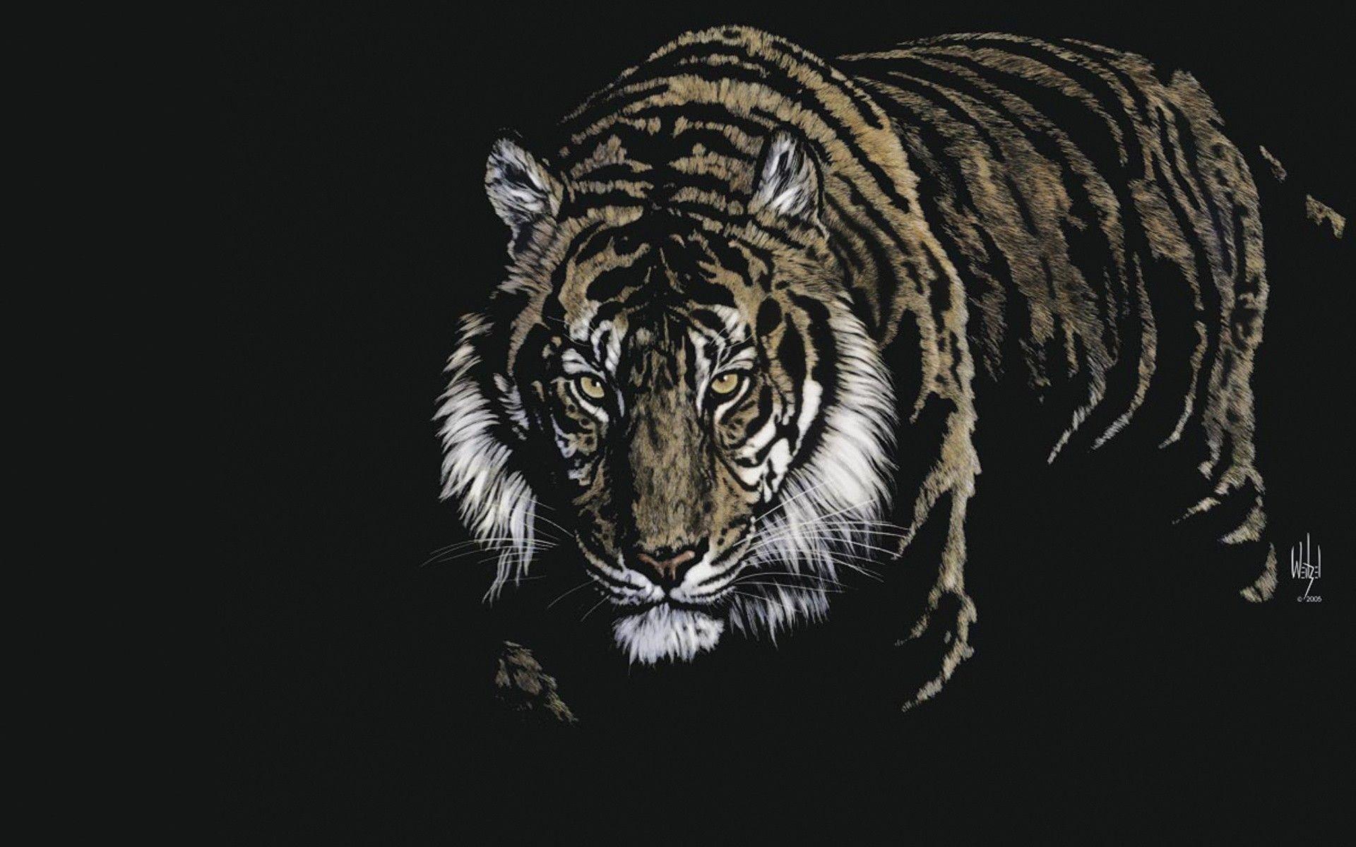 3D Animals Wallpapers