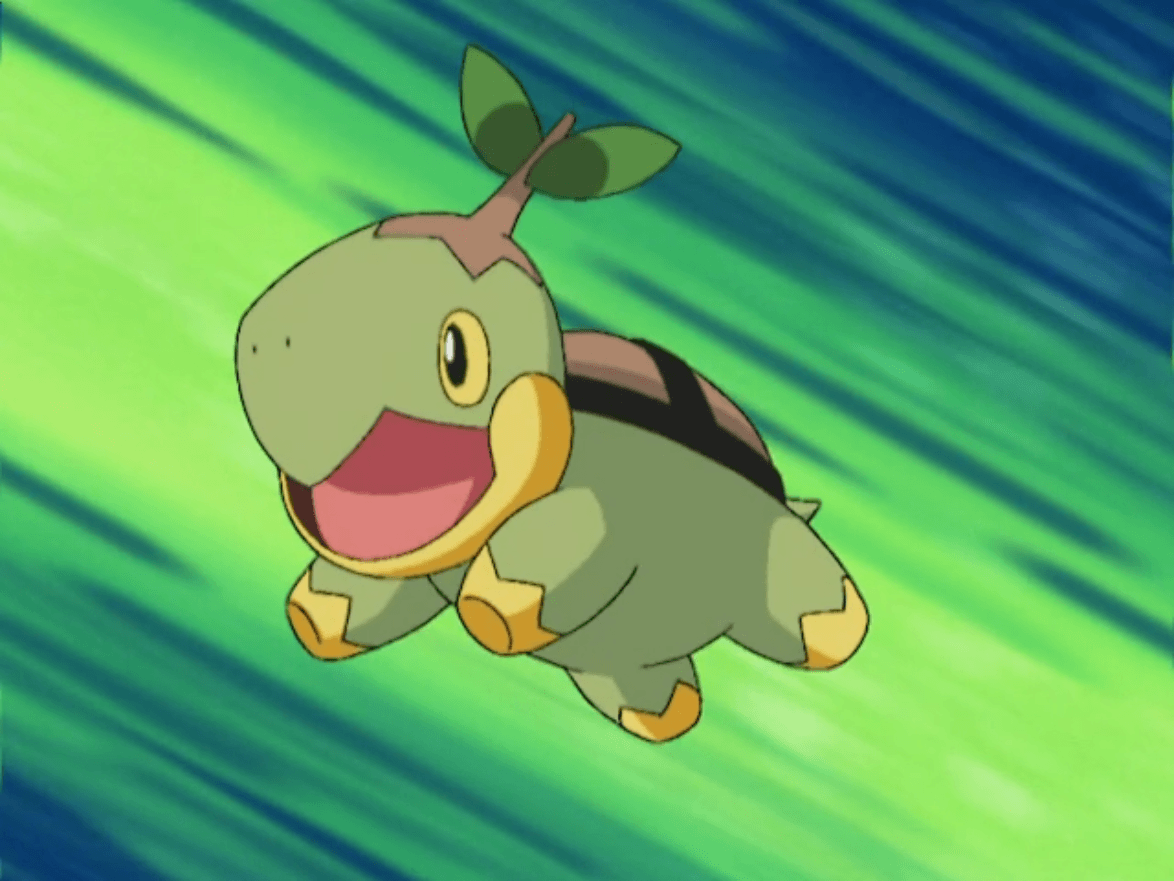 Image - Ash Turtwig.png | Pokémon Wiki | FANDOM powered by Wikia