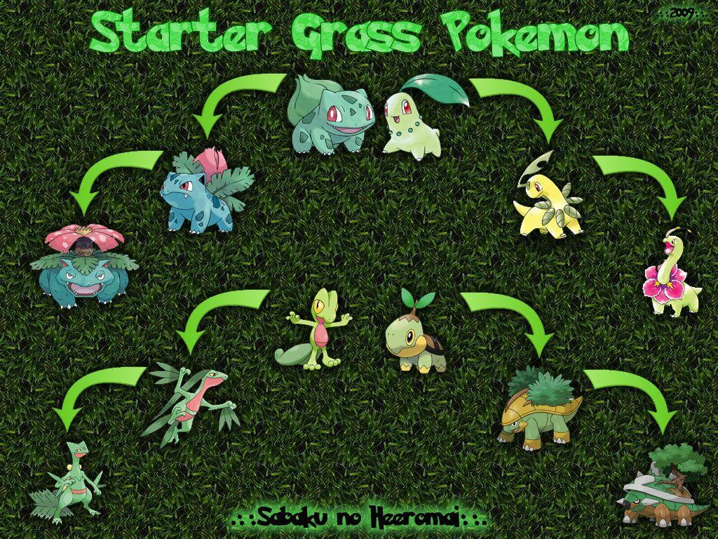 pokemon chikorita turtwig grass bulbasaur