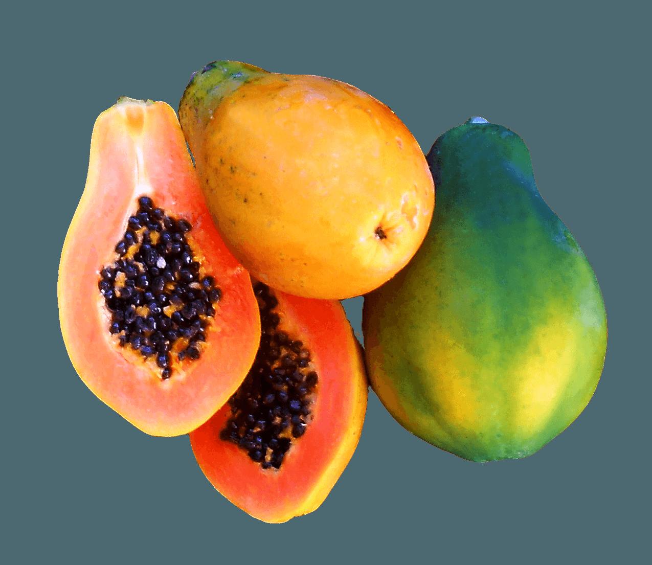 papaya png - HD1275×1105
