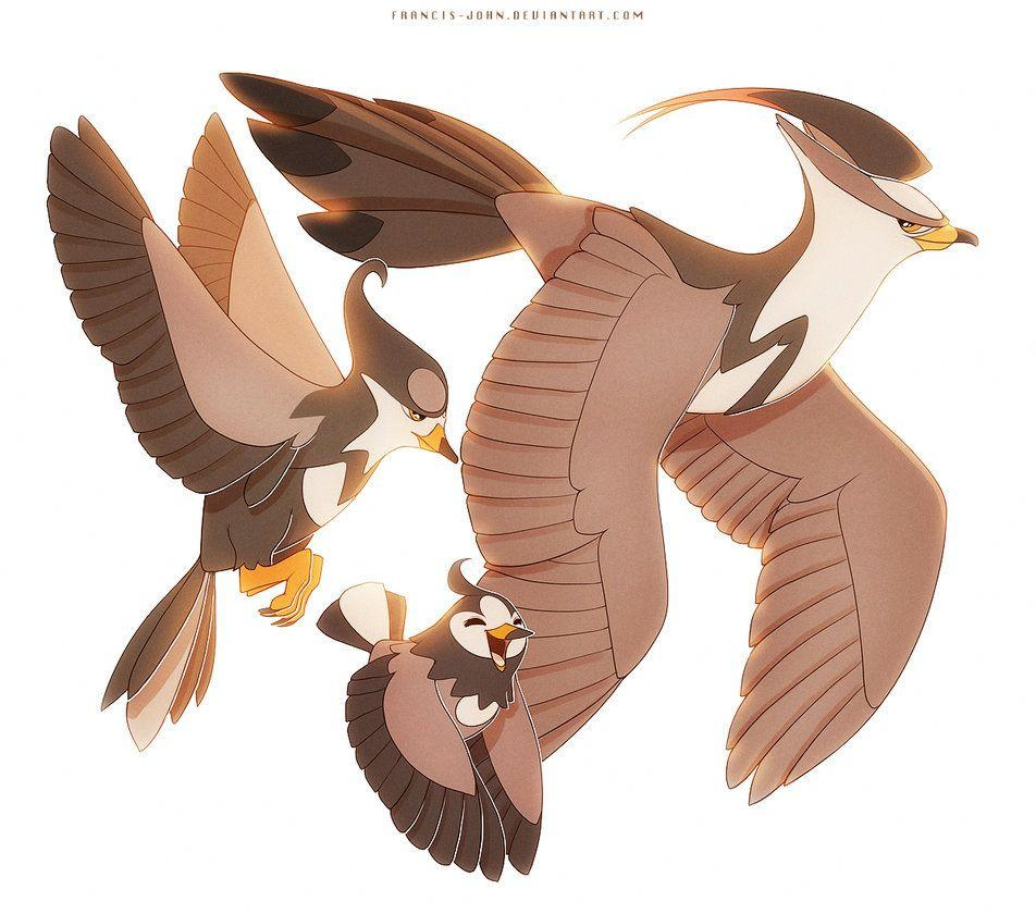 Staravia Starly and Staraptor by francis
